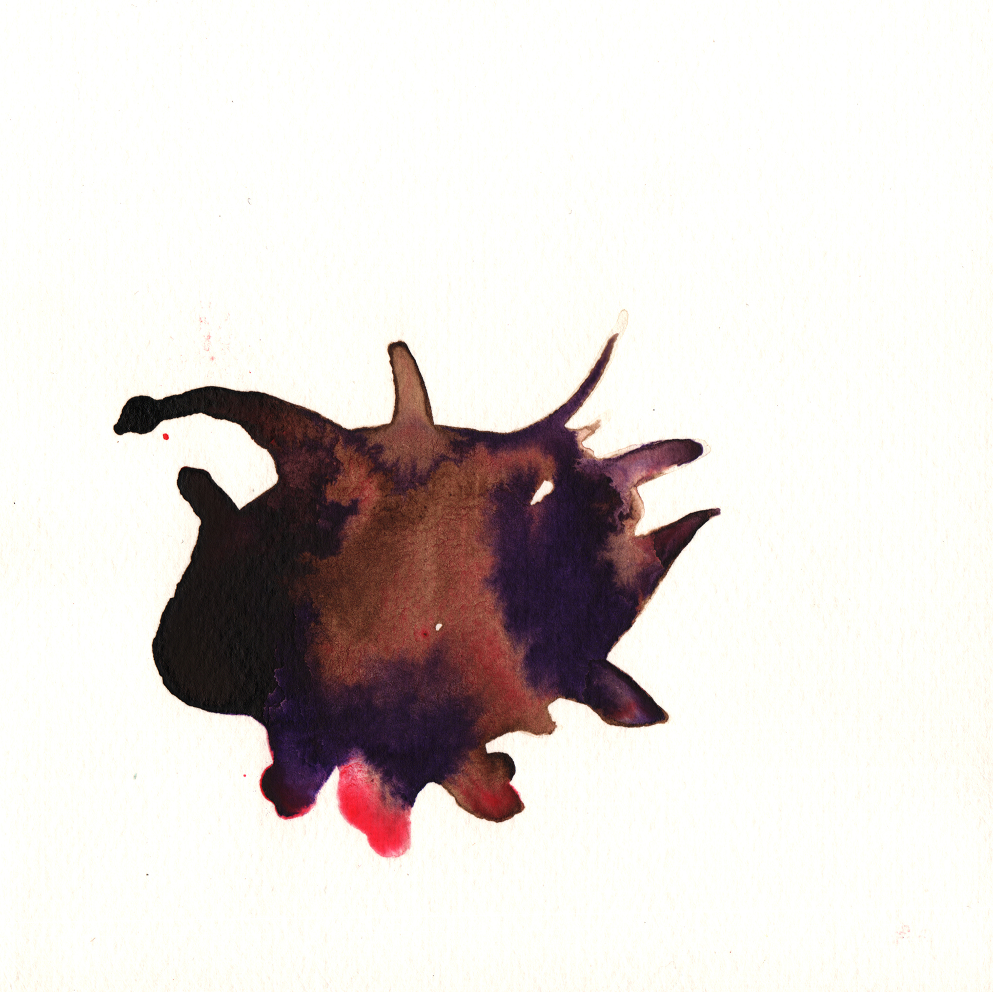 237.Opuntia.10.3.14.jpg