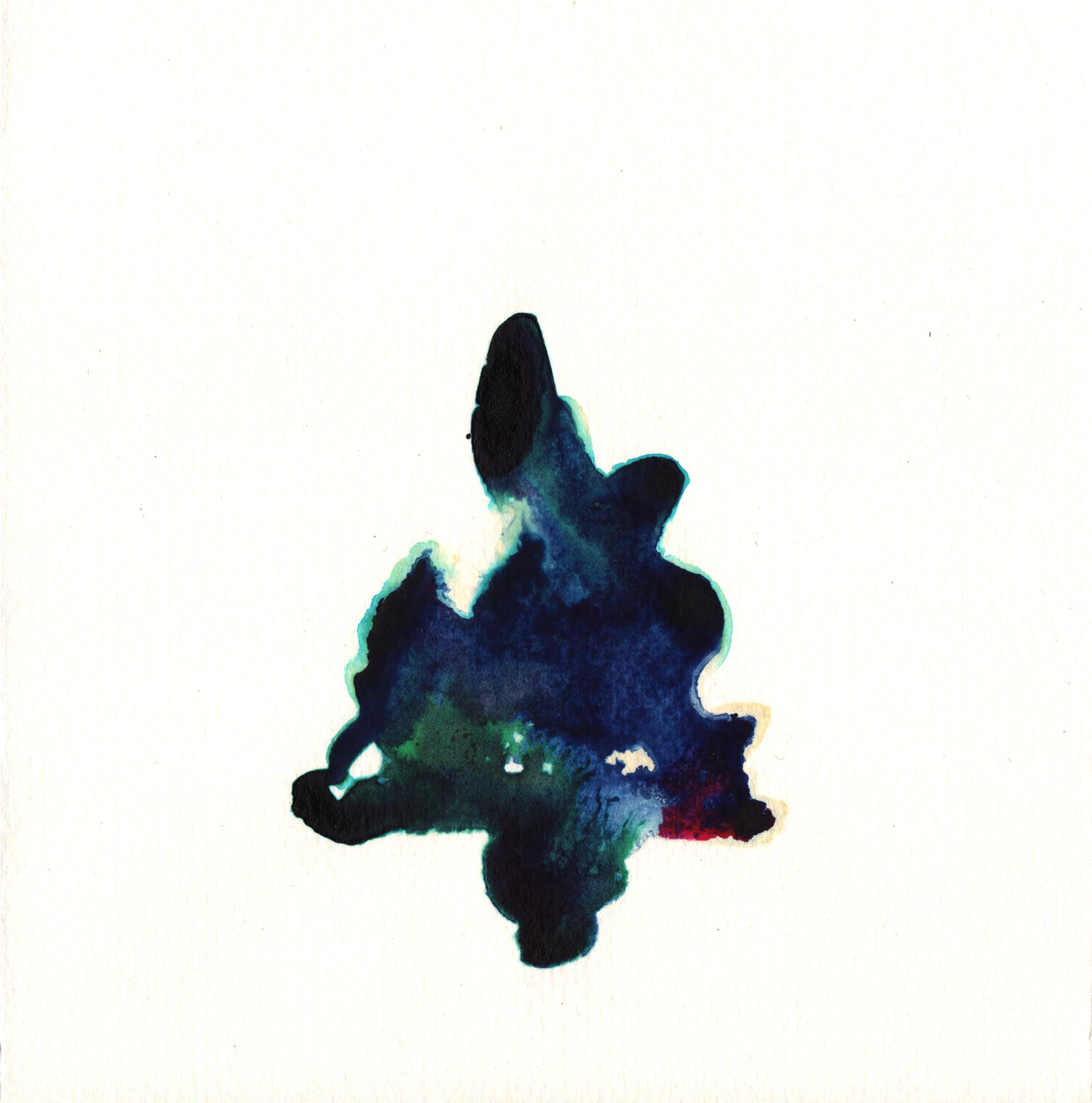 250.Blue.Fern.10.16.14.jpg