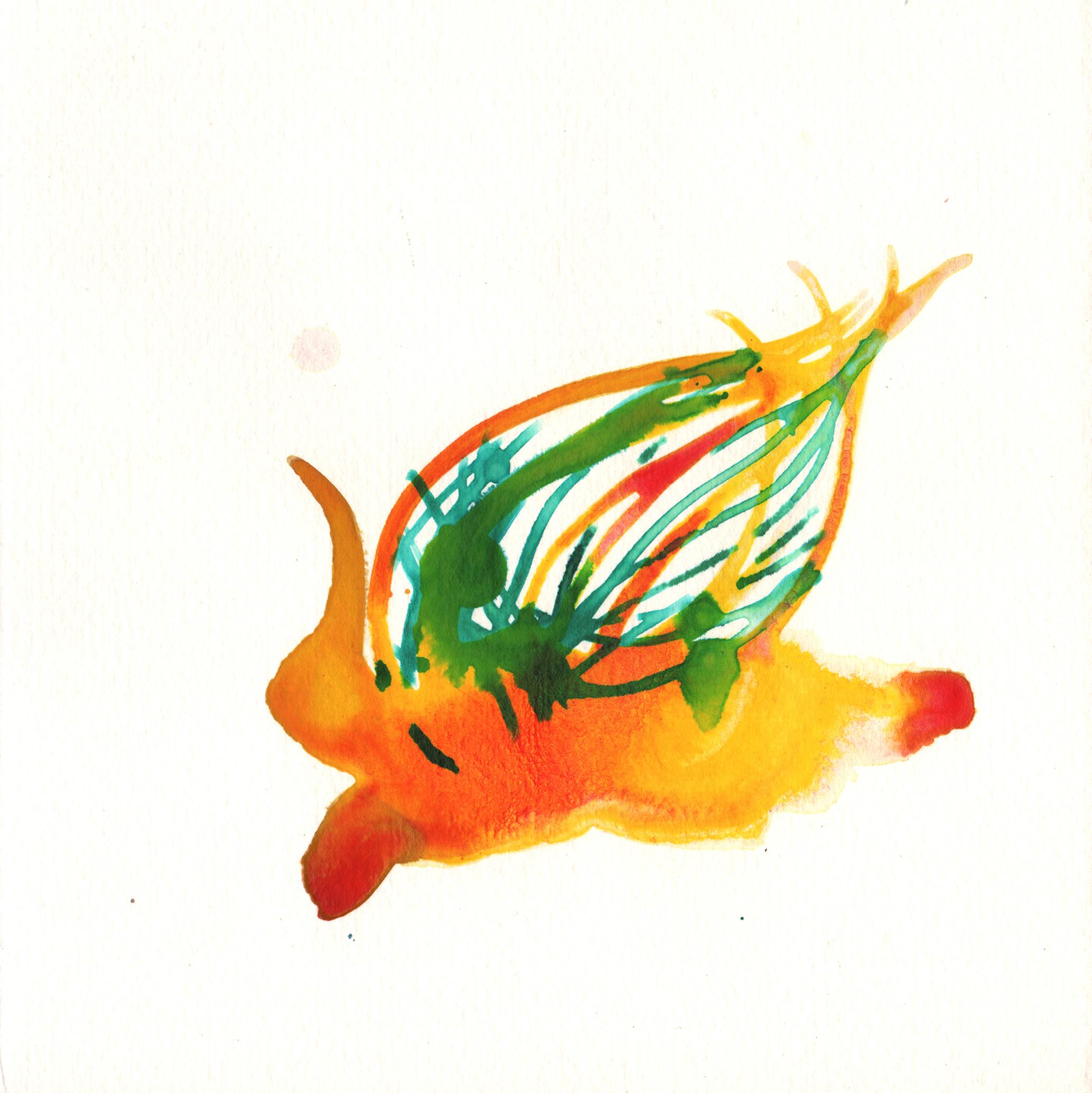 253.Protea.10.19.14.jpg