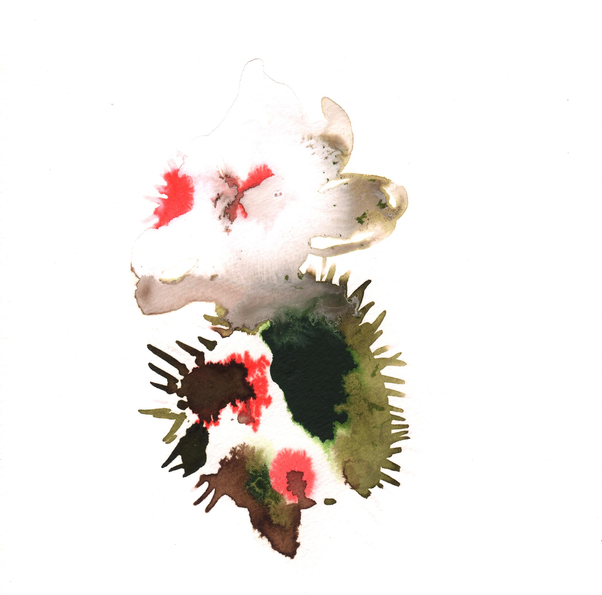 266.Echinopsis.Deserticola.11.1.14.jpg