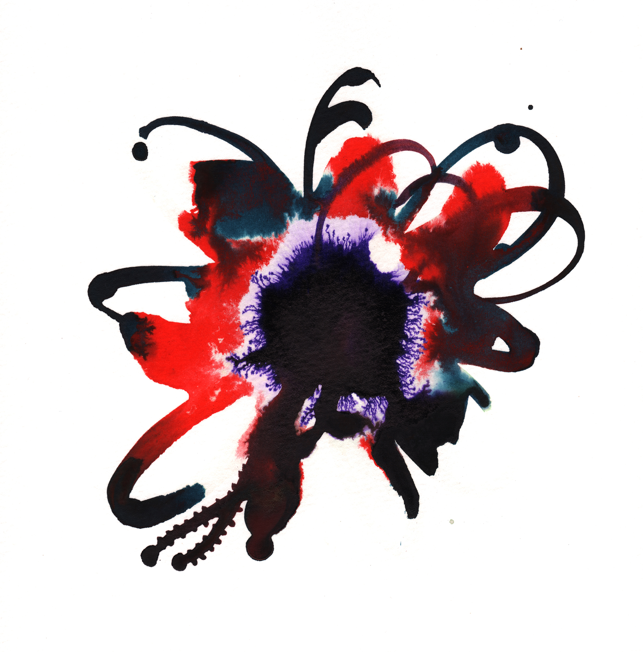 273.Hibiscus.11.8.14.jpg
