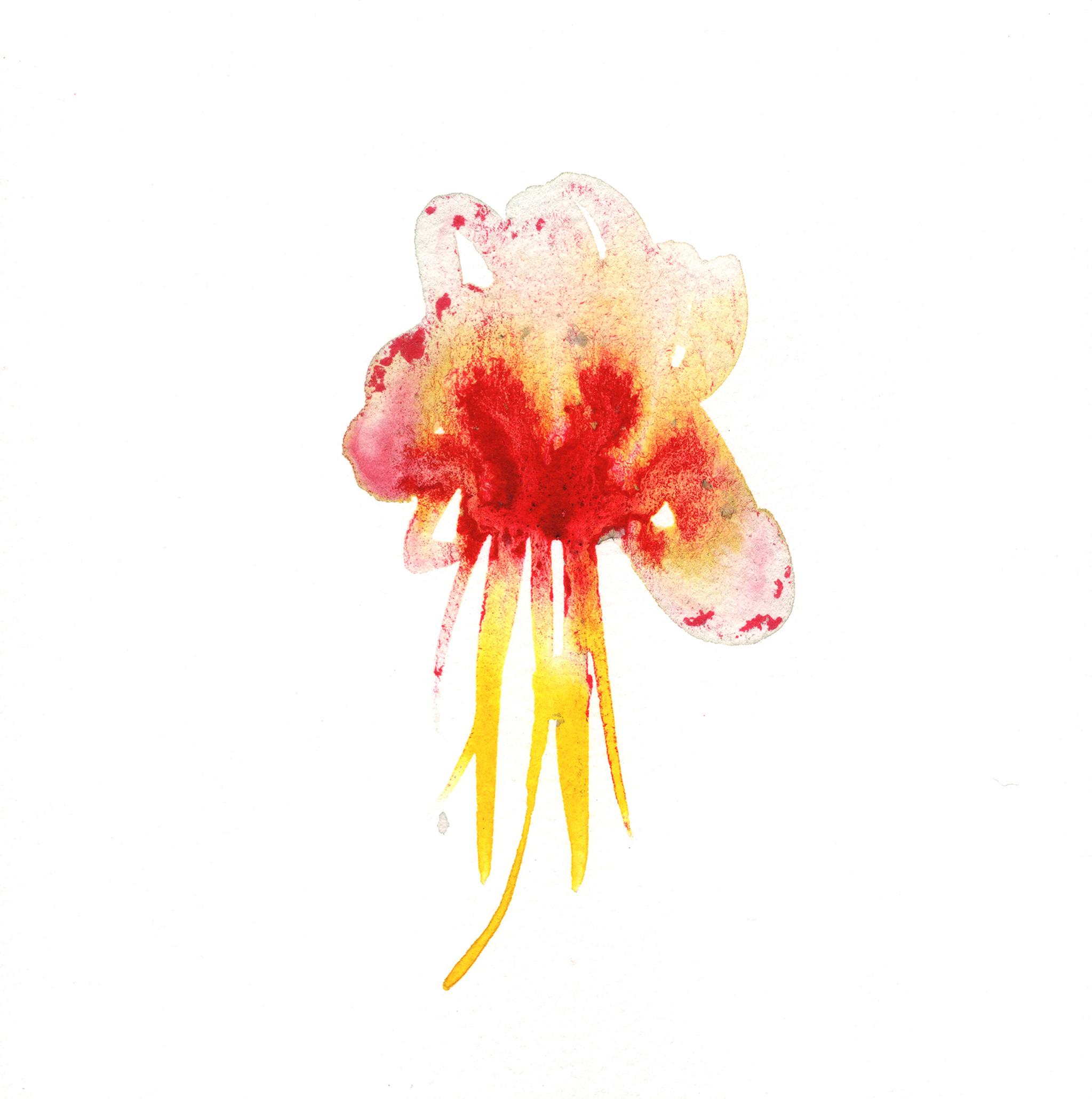 274.Orchid.11.9.14jpg.jpg
