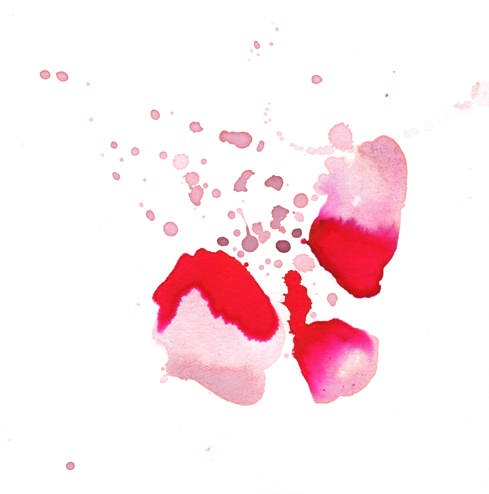 282.Rose.Petals.11.17.14jpg.jpg