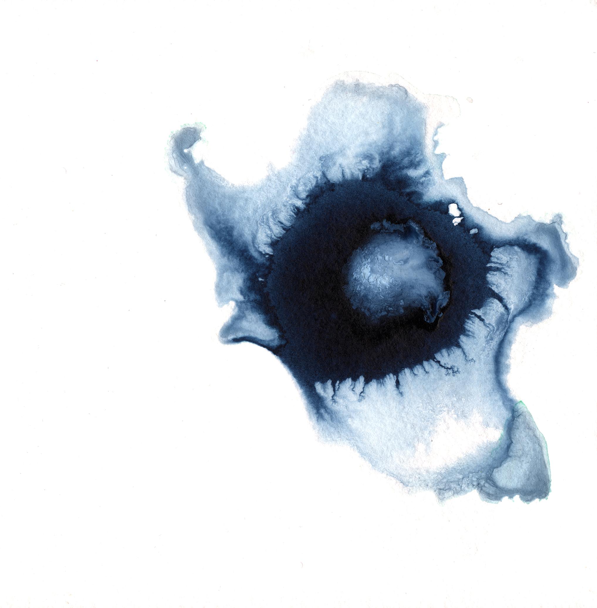 295.Anemone.11.30.14.jpg