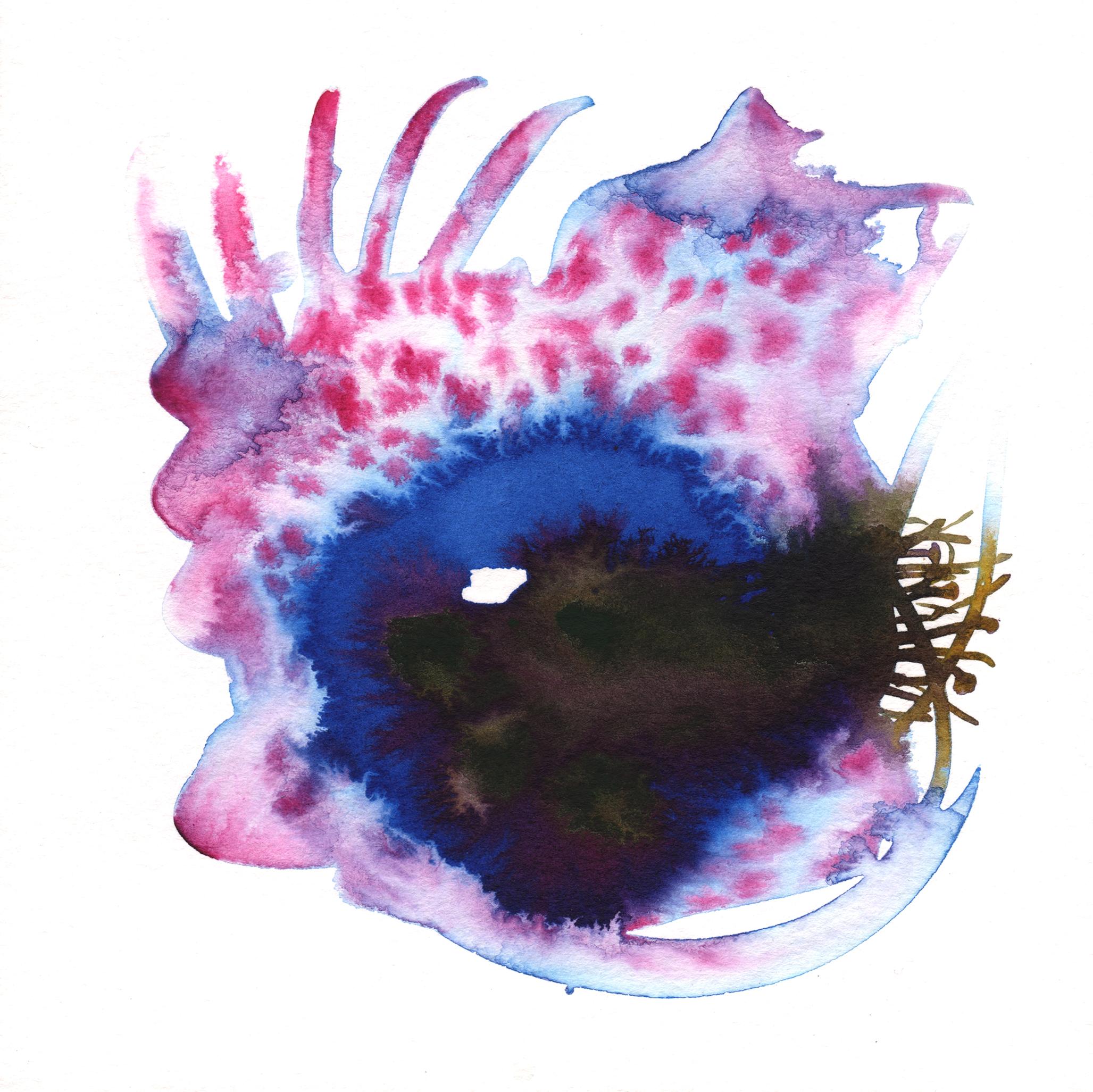 300.Coral.Bloom.12.5.14.jpg