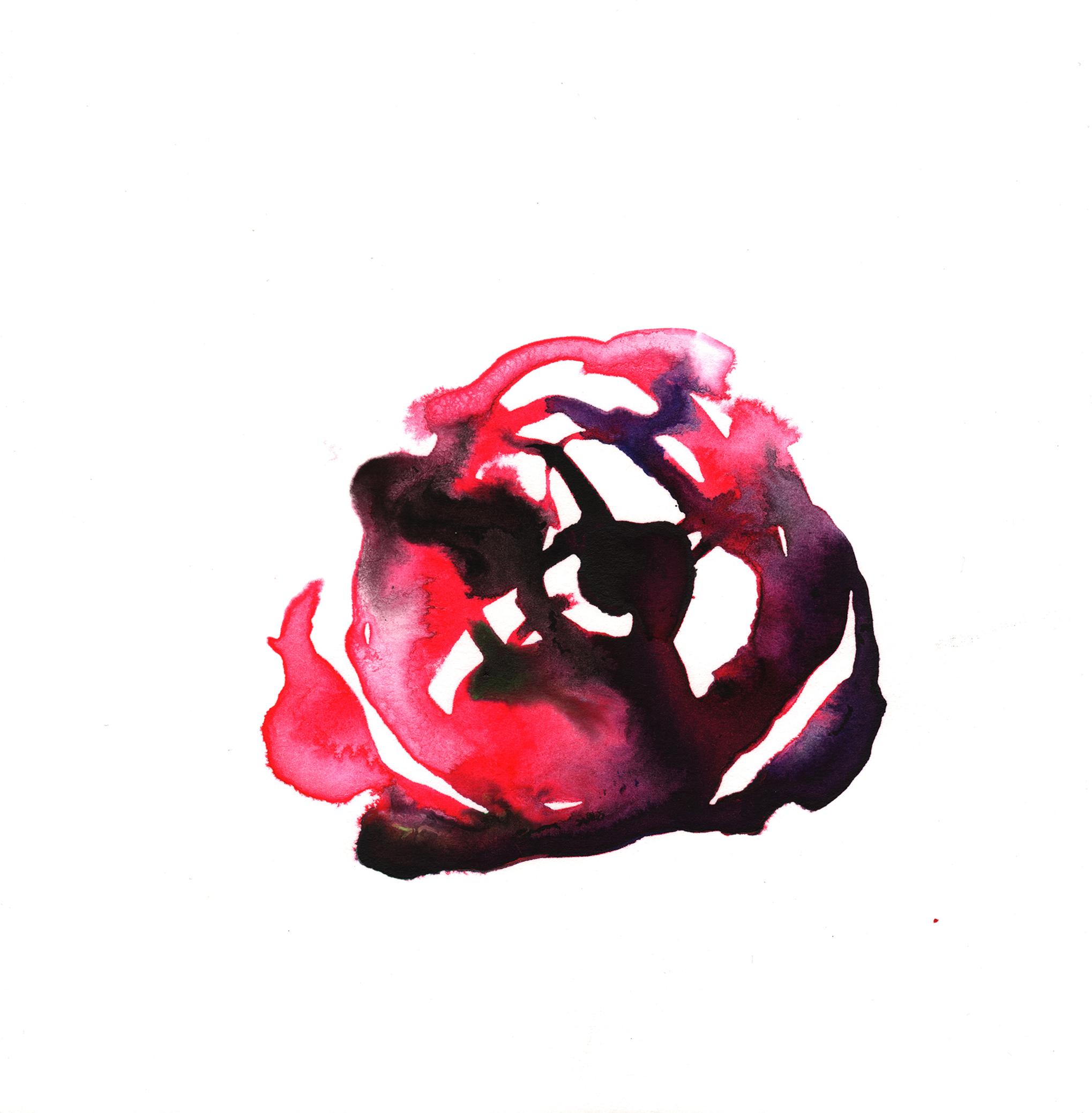 308.Rose.12.13.14.jpg