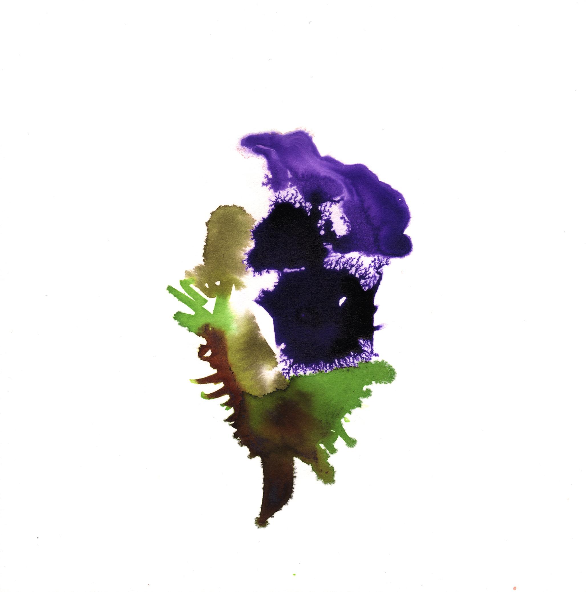 313.Poppy.12.18.14.jpg