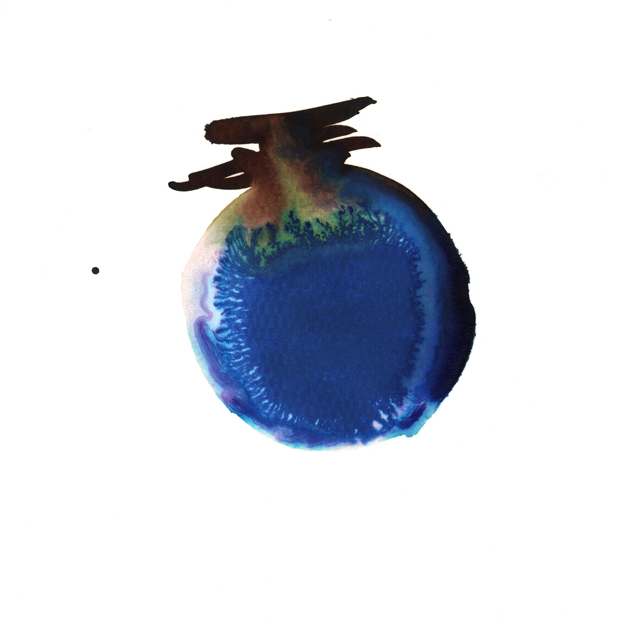316.Blueberry.12.21.14.jpg
