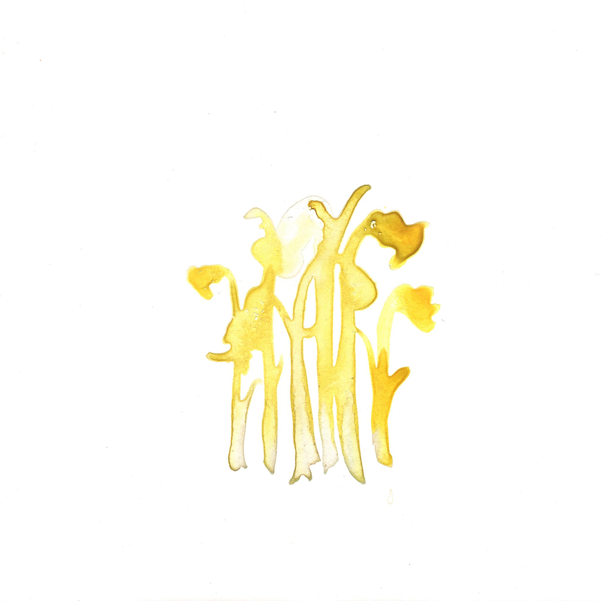 336.Ghost.Plant.1.10.15.jpg