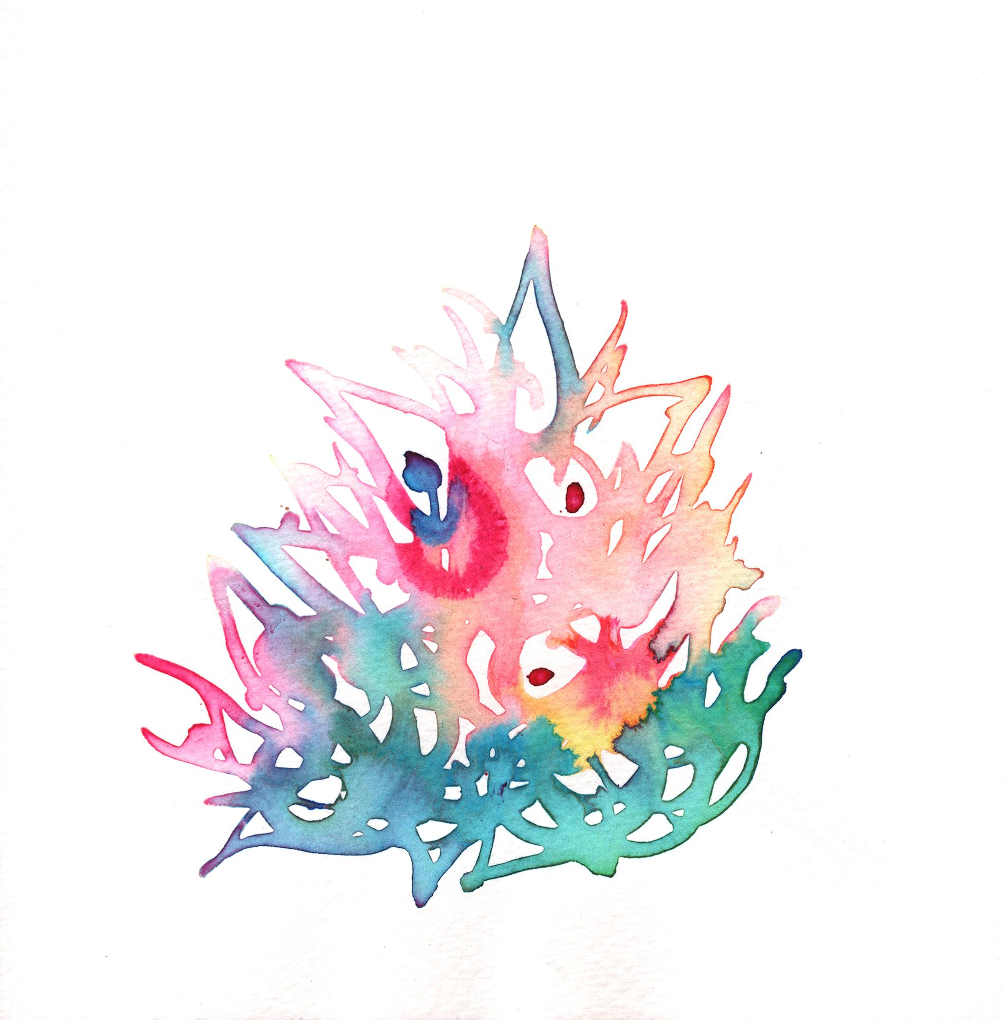 352.Bromeliad.1.26.15.jpg