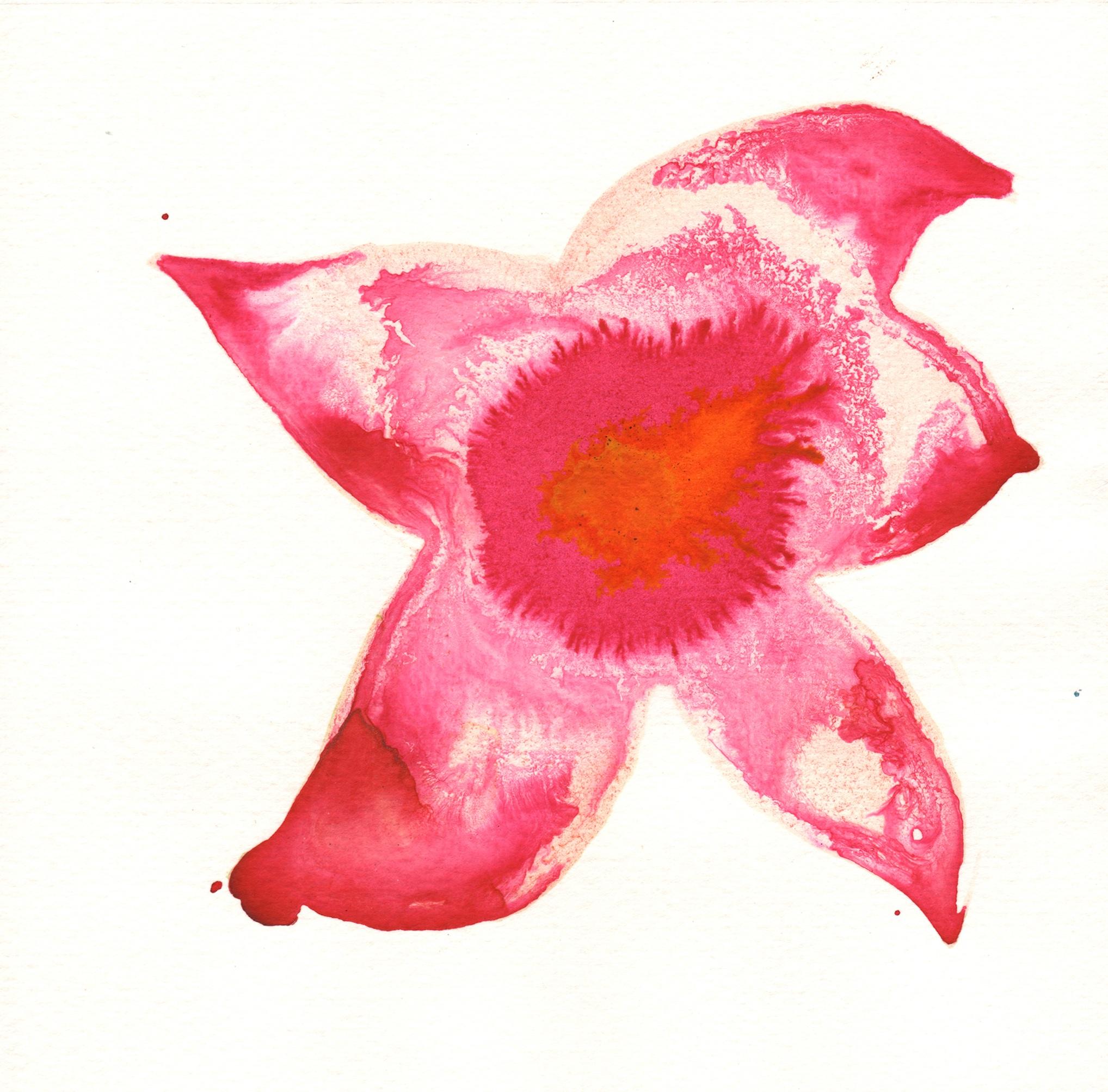 221.Passion.Flower.9.17.14.jpg