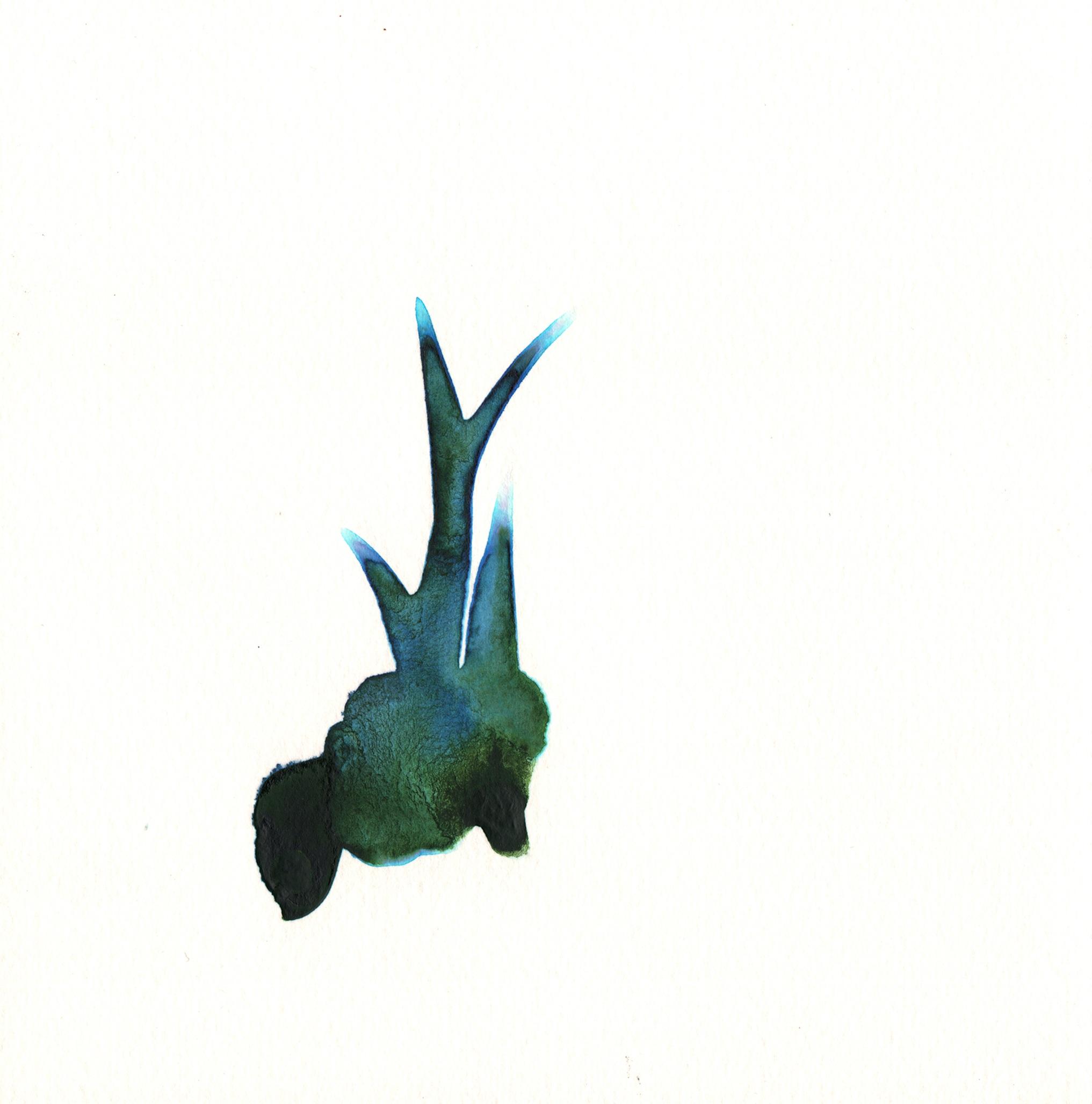 242.Aloe.Bud.10.8.14.jpg