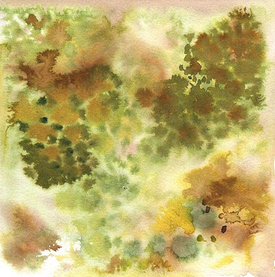 WIA.24.FOREST.4.2.15.jpg