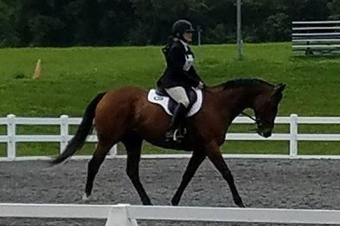 Nellie's First Dressage Show