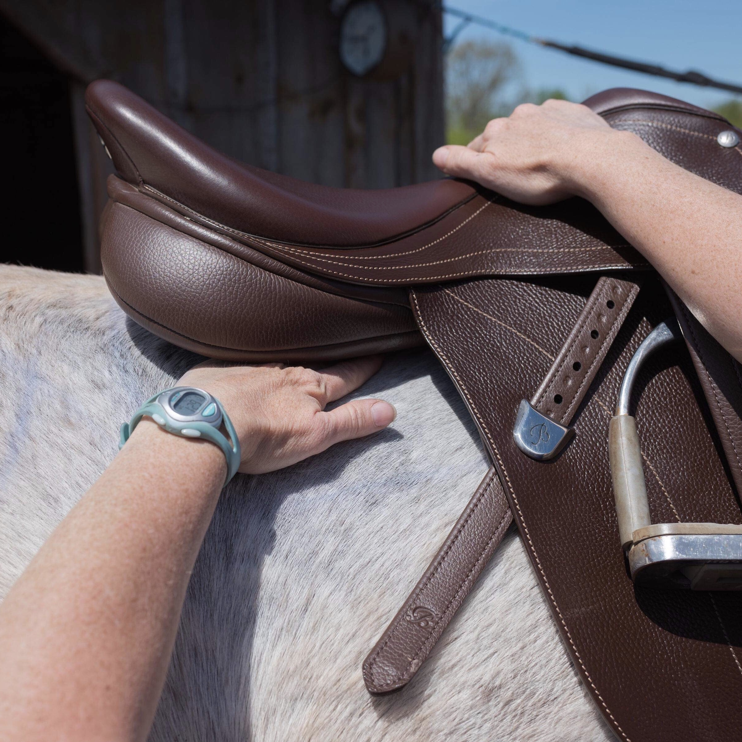 Static Evaluation - Karen will evaluate the saddle for fit