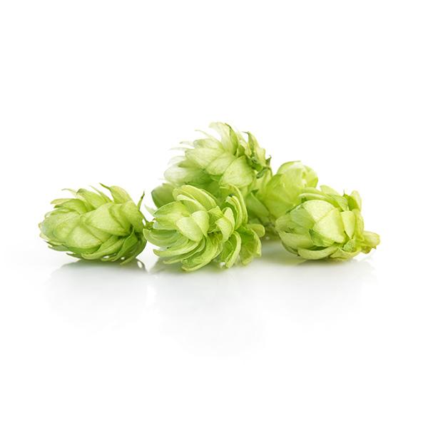leaf-hops.jpg