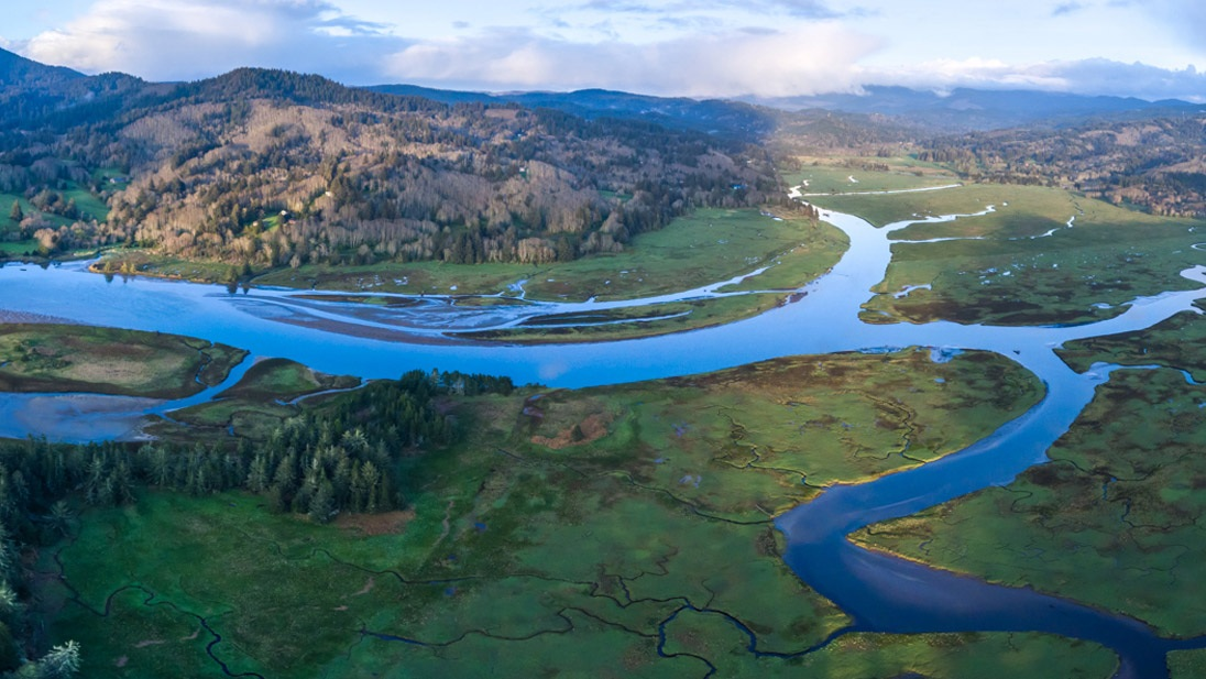 The Salmon River and its restored estuary
