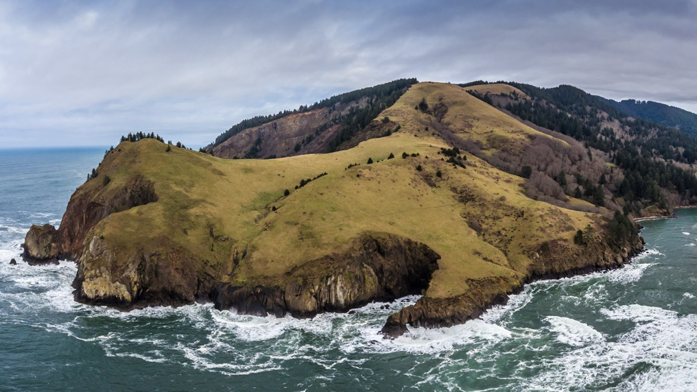 the native prairie meadows of Cascade Head stretch 2 miles out to sea