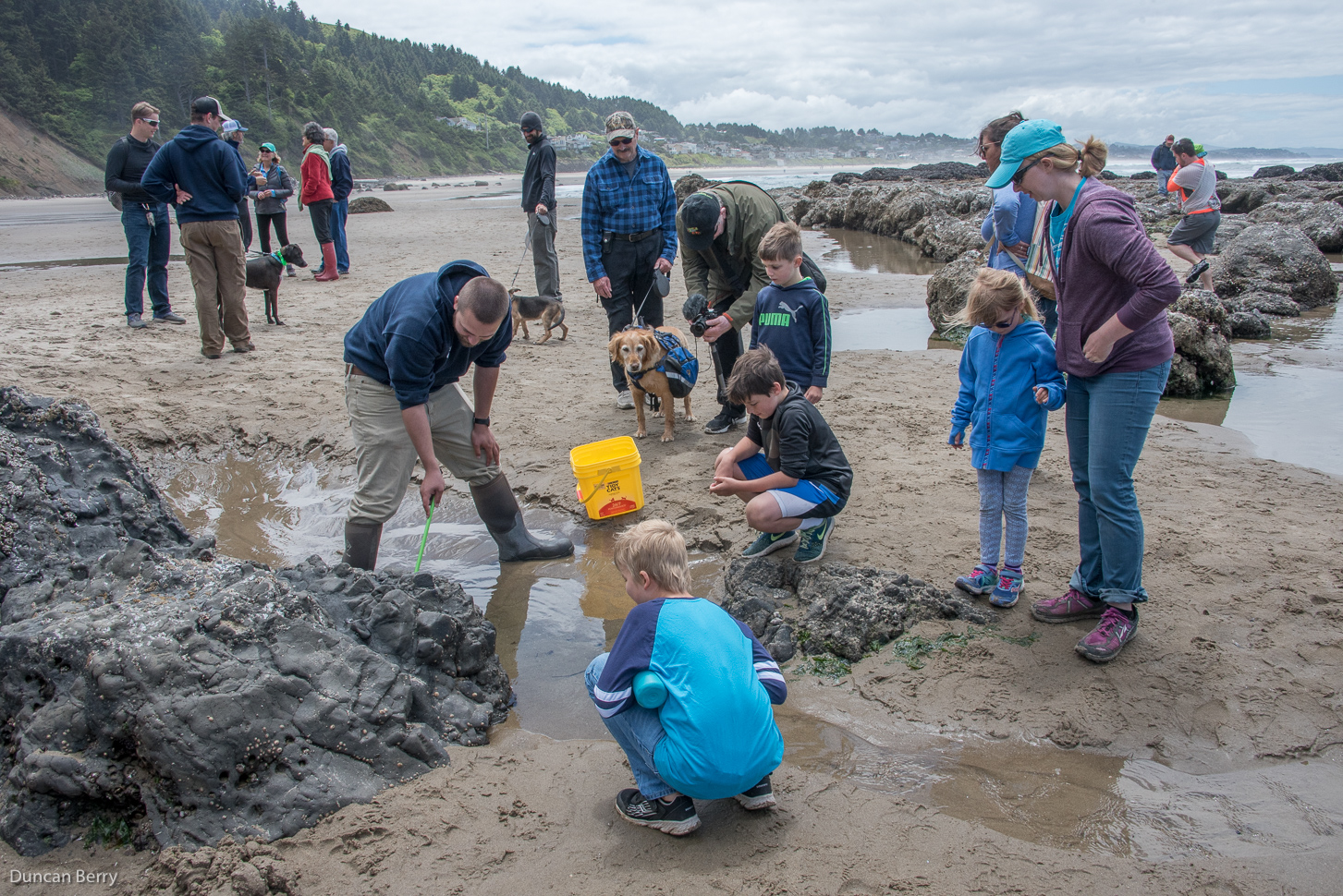 the vibrant human communities of Otis and Lincoln City, Oregon