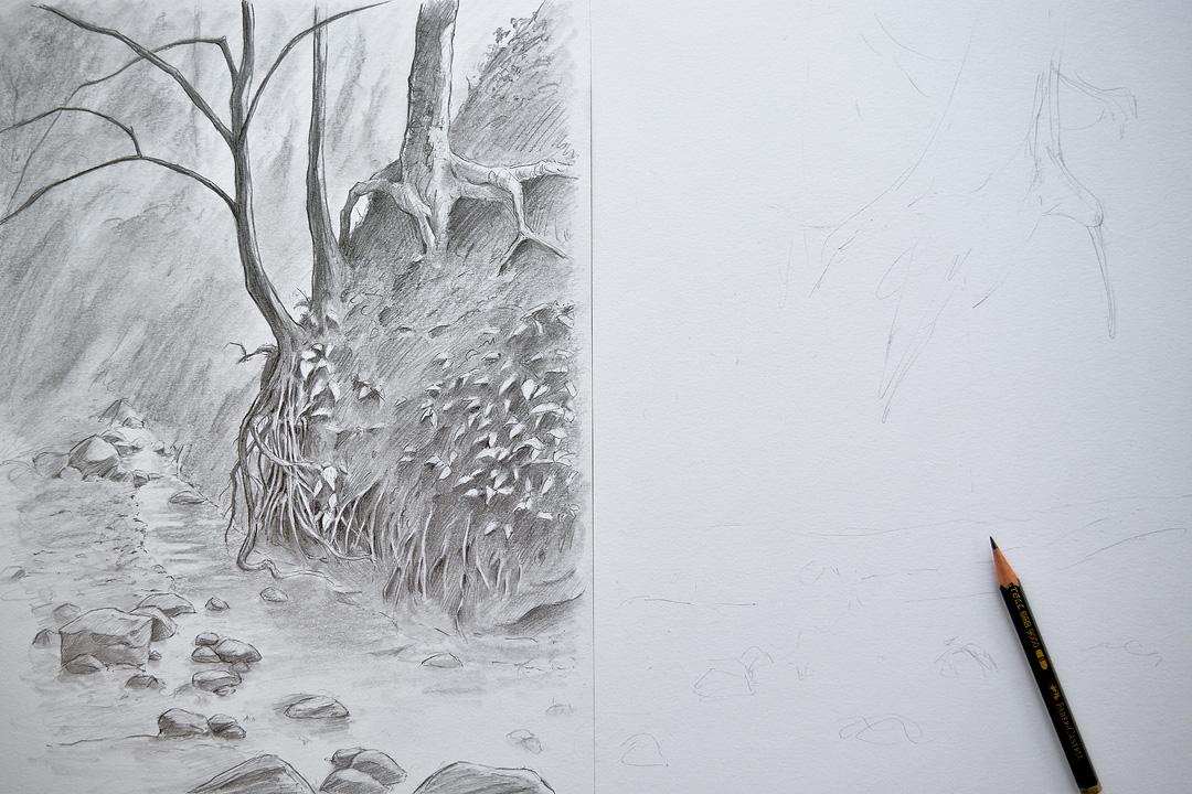 Creek bank sketch (unfinished).