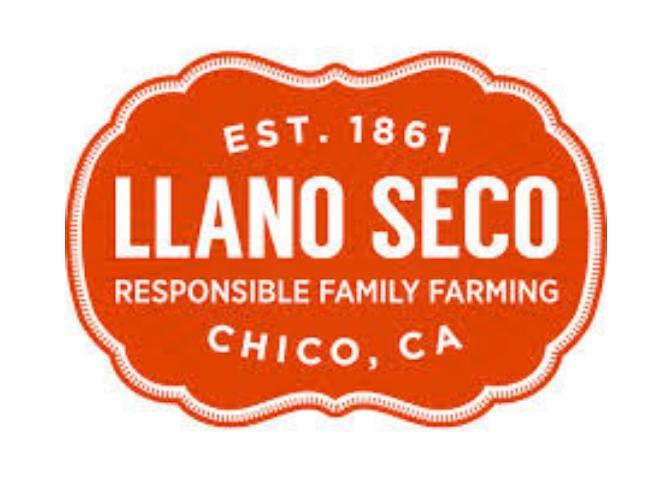 LlanoSecoLogo.jpg