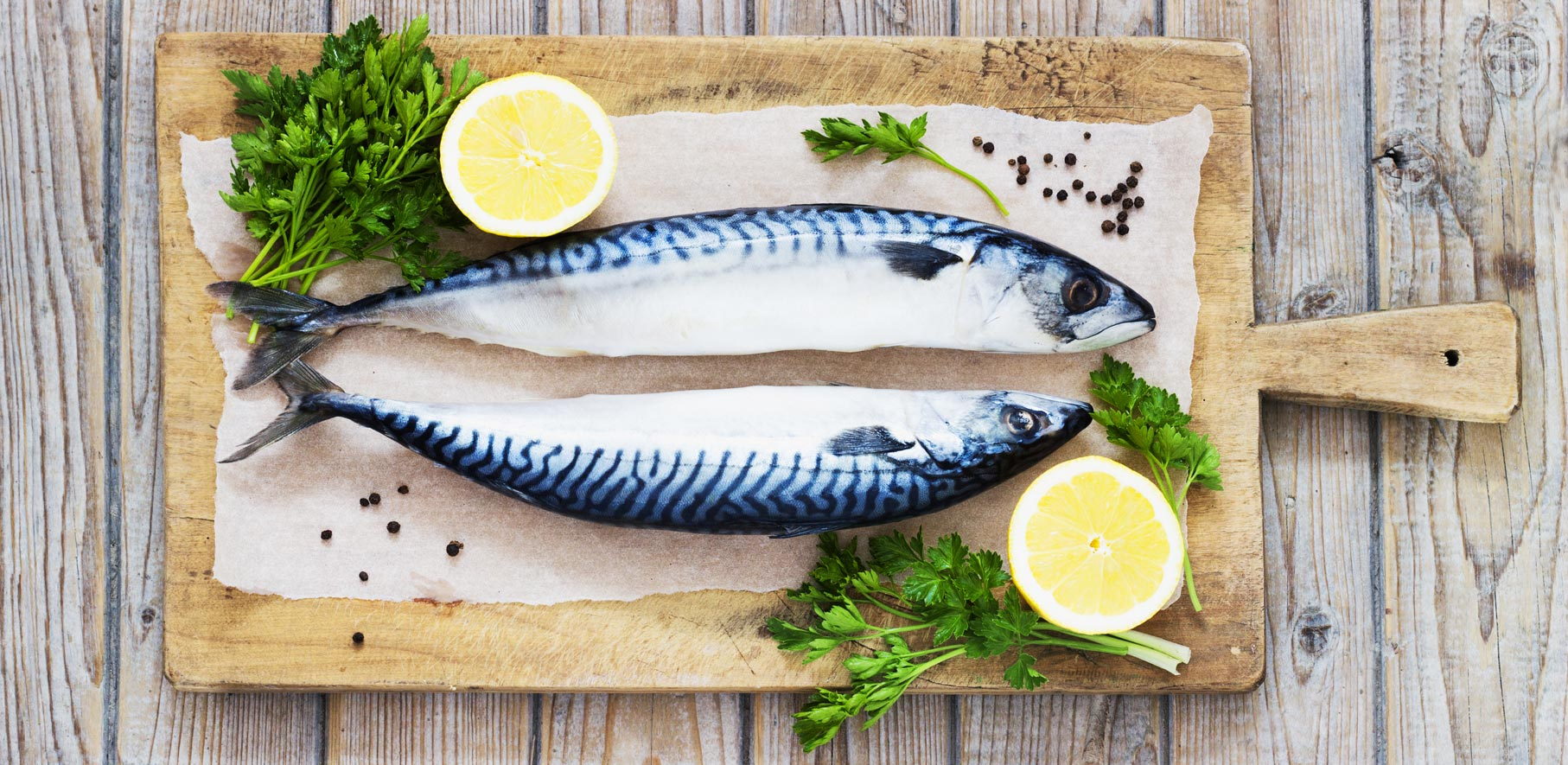 Seafood Mackeral  Banner pic.jpg