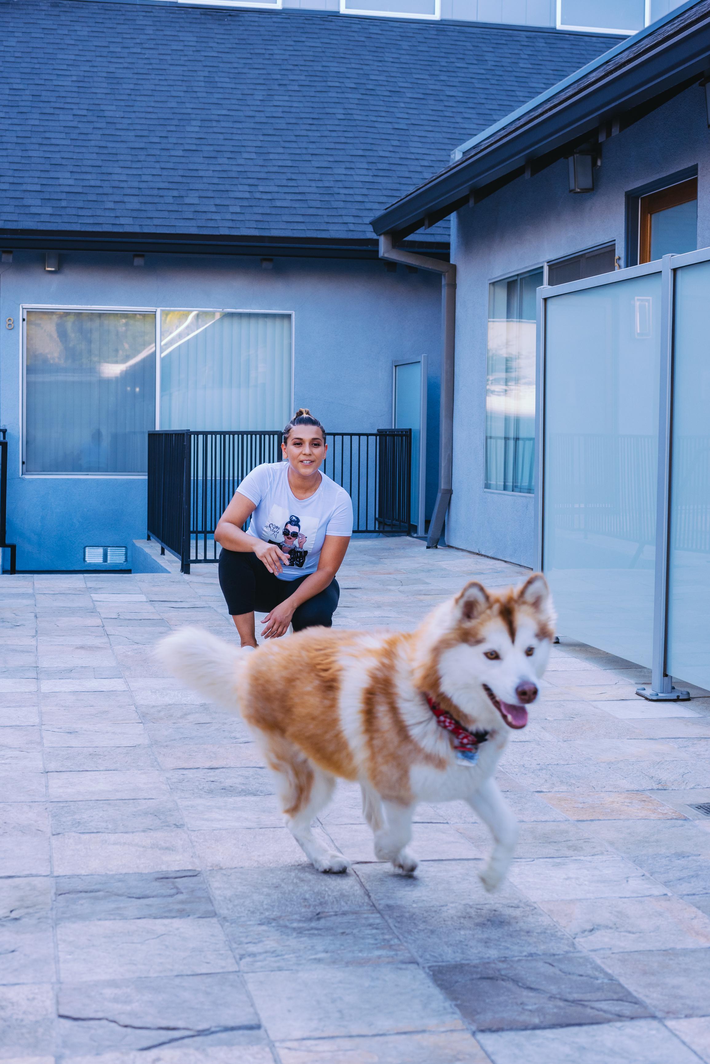 Dog model: @Hey.Mayapapaya