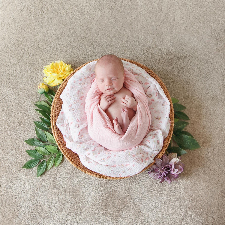 newborn-girl-flowers-spring-massachusetts-nicole-chaput-photography-003.jpg