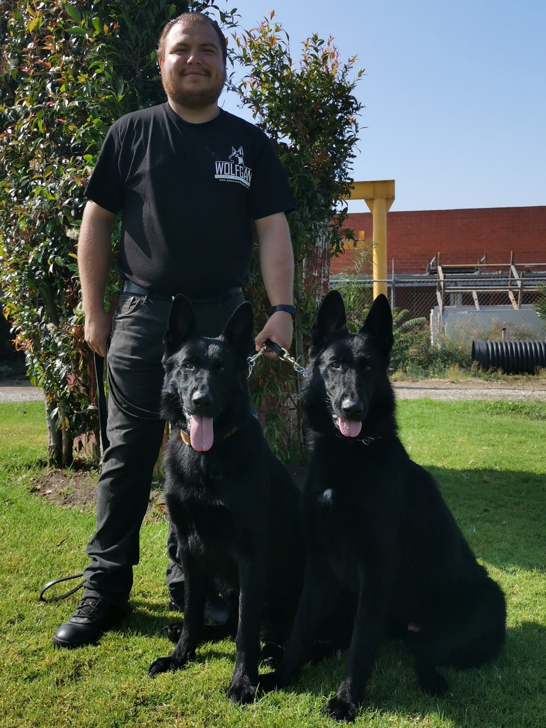 Gabriel is the newest Trainer in the Wolfgang K9 team. -