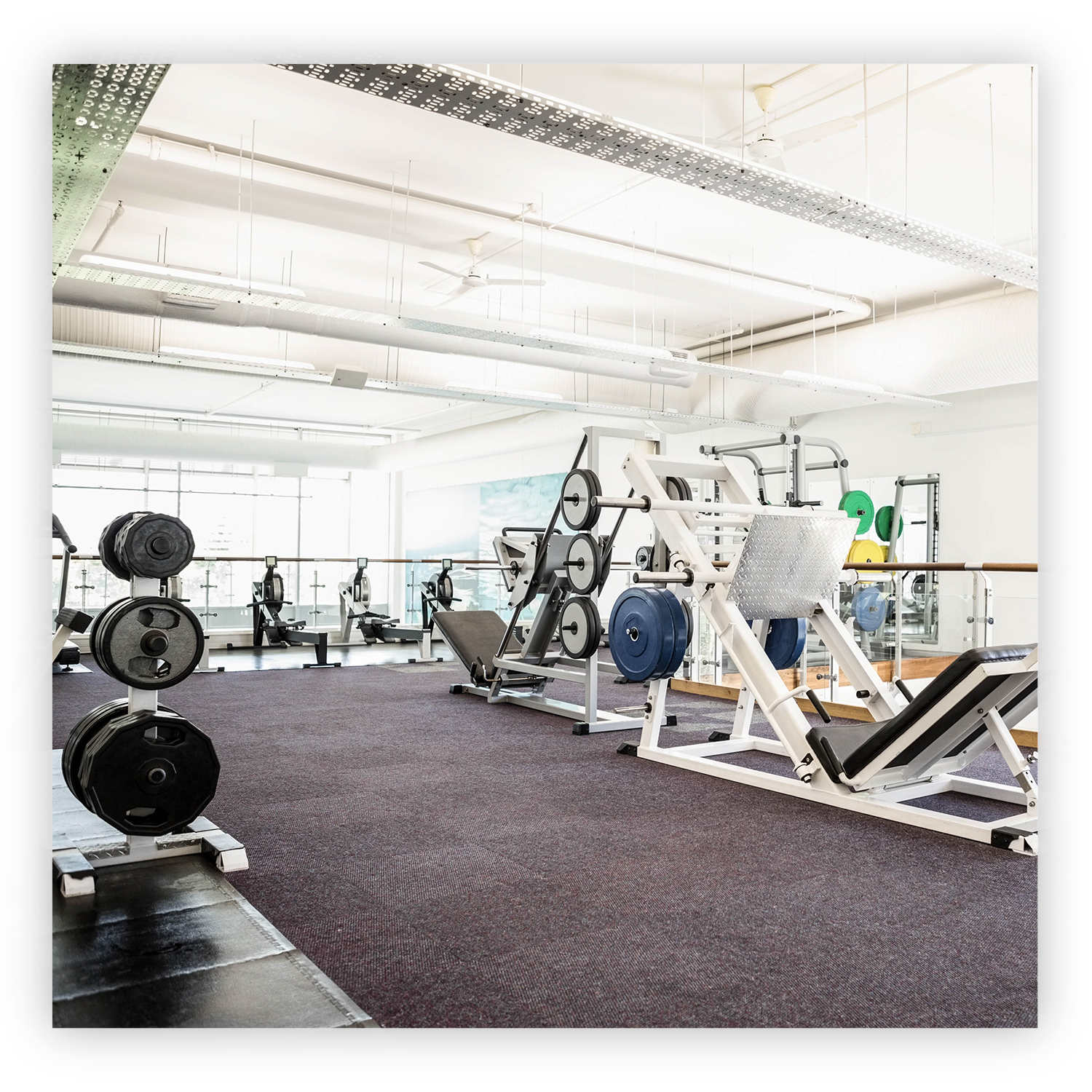 Fitness & Wellness Facilities - These facilities have discovered their competitive edge is filling the need for proactive musculoskeletal health.