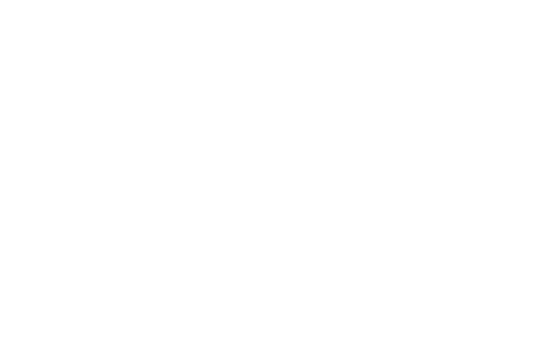 OFFICIAL SELECTION - Indy Film Festival - 2017 copy.png