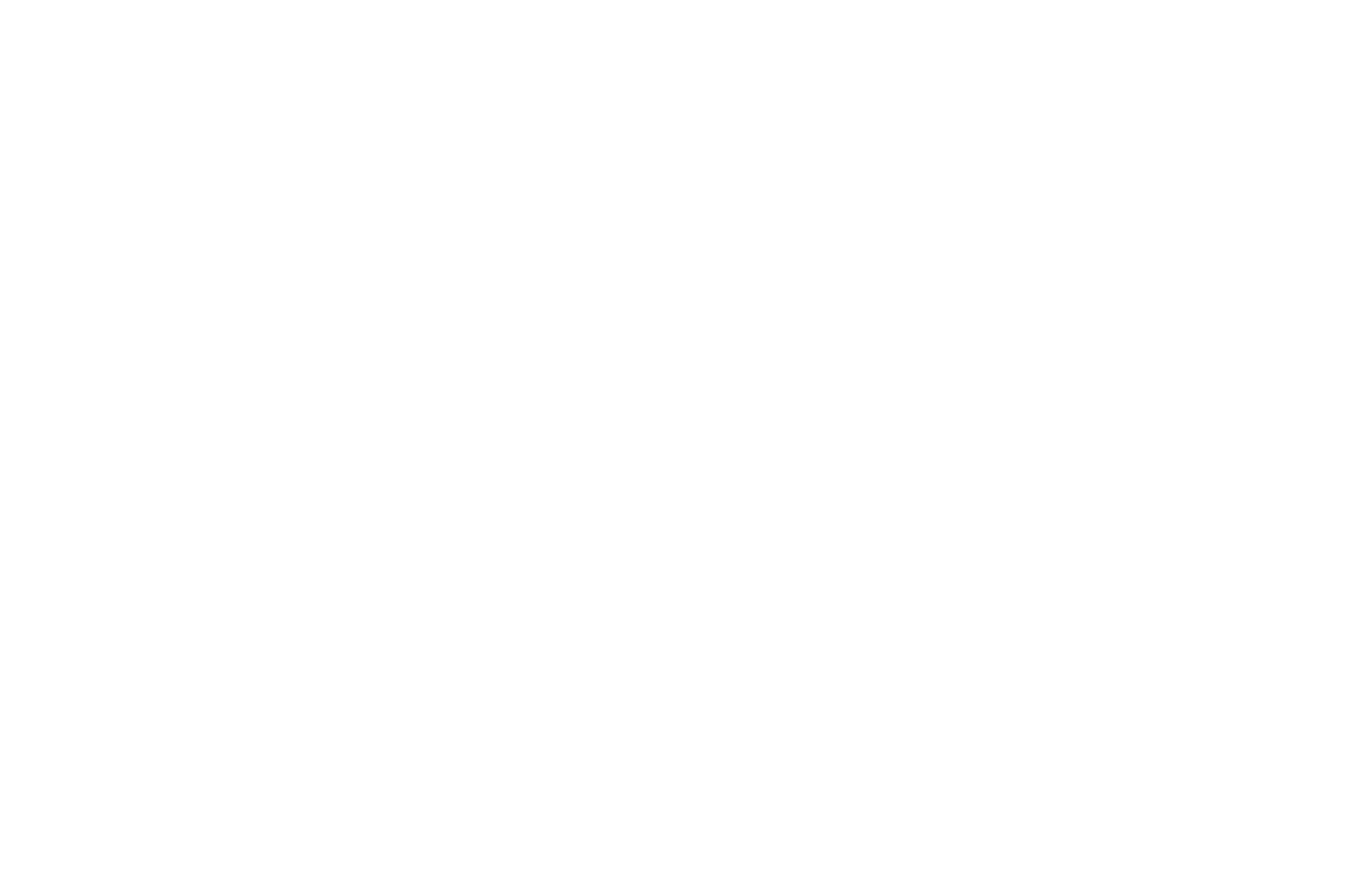 OFFICIAL SELECTION - NewFilmmakers New York Film Festival - 2018.png