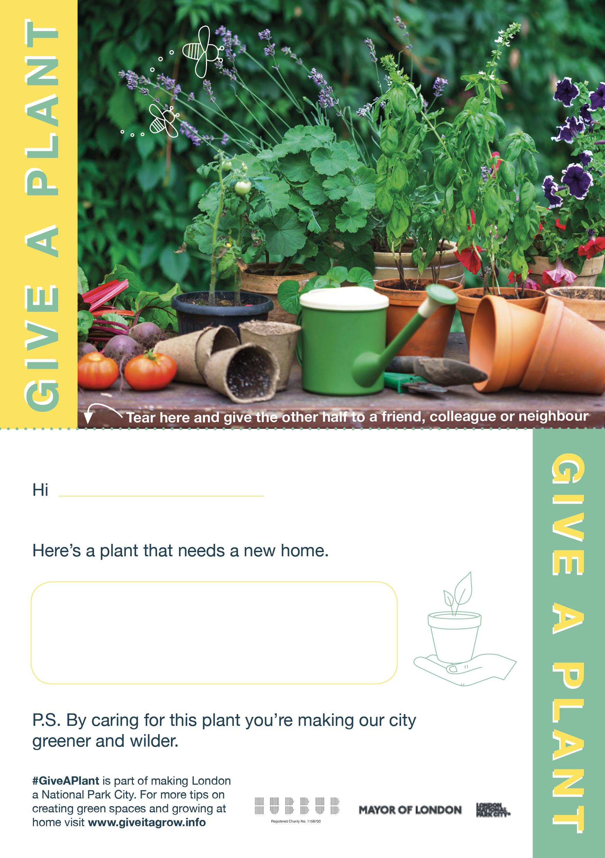 Give a plant postcard.jpg