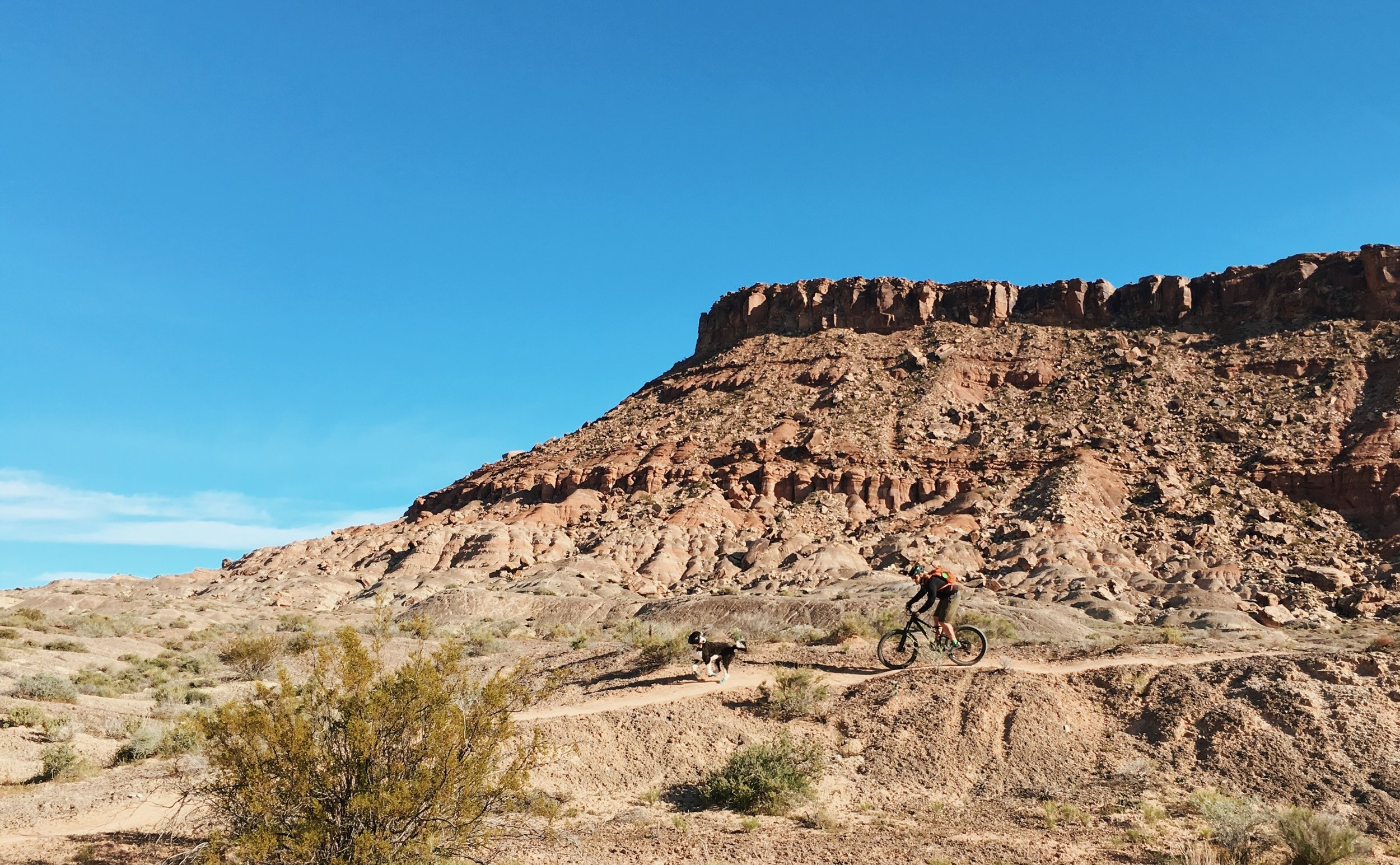Mountain Biking - St. George has a rich 20-year mountain biking, and racing history and Divario will sit right in the middle of it all.Learn More