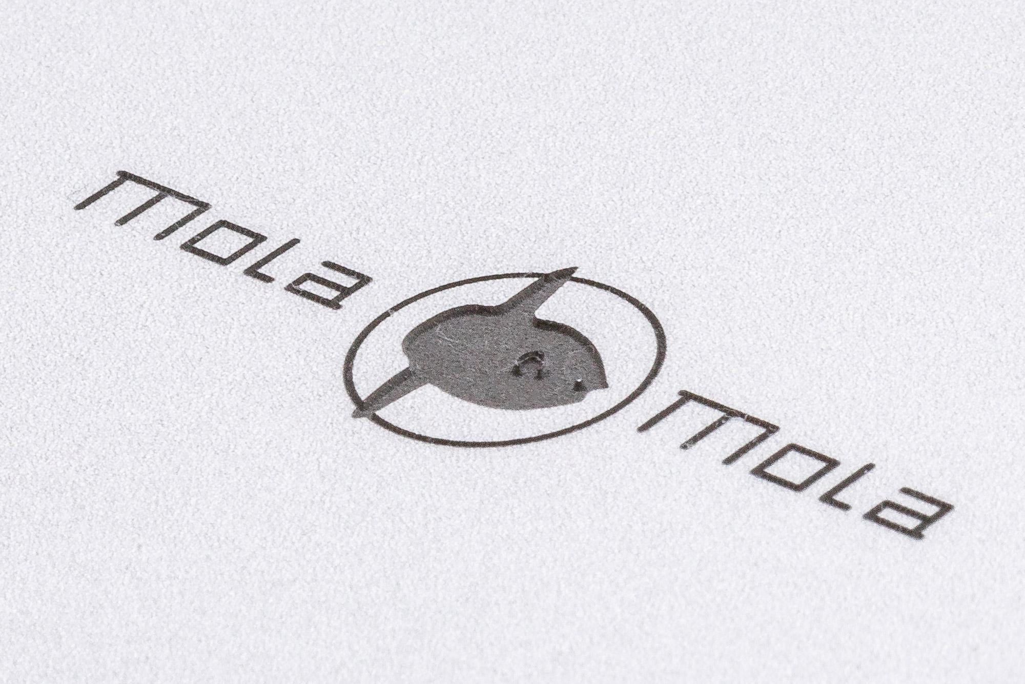mola-mola-gallery-1.jpg