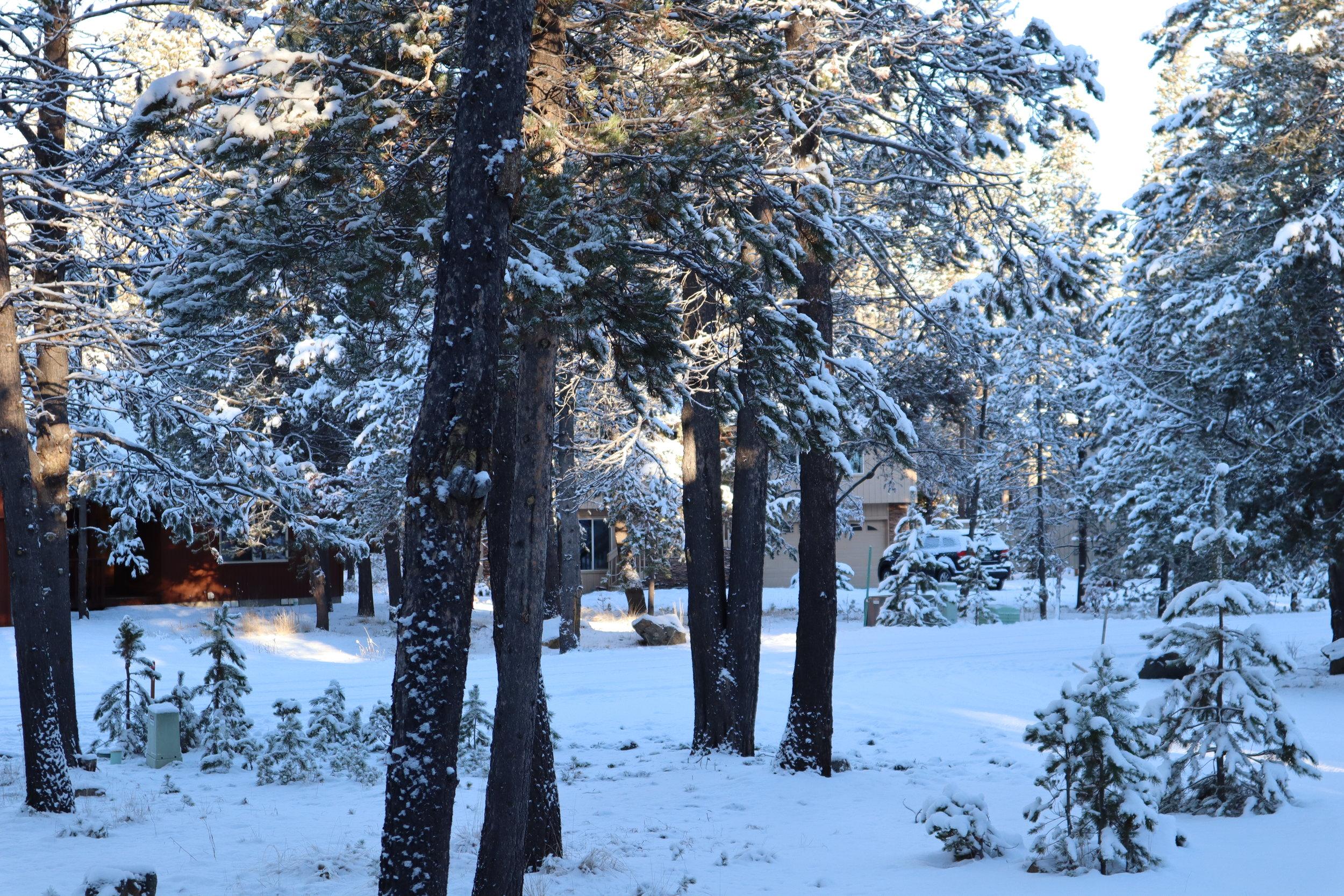 sunriver, oregon, winter, snow