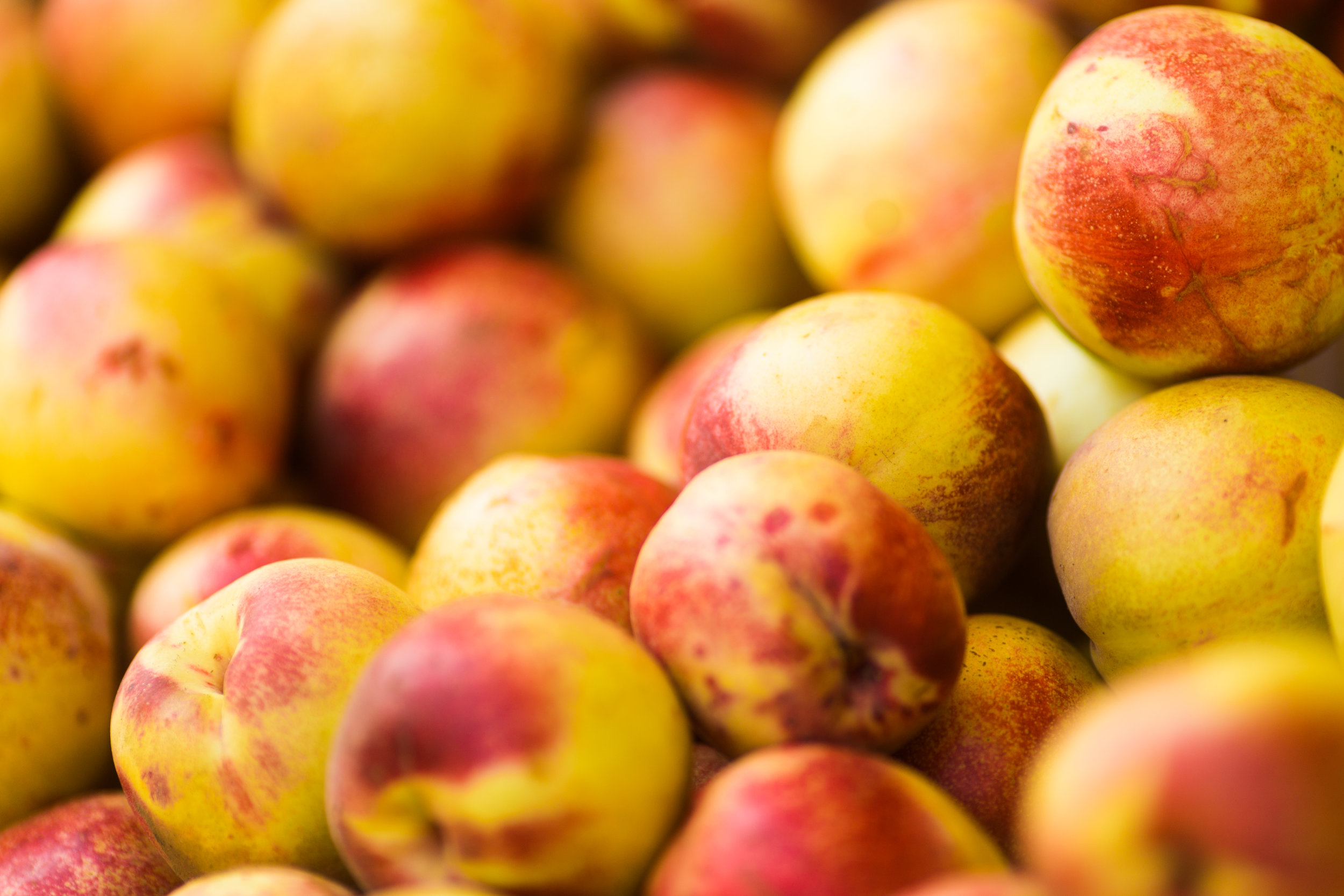 """Nectarines are just less fuzzy peaches."" -"