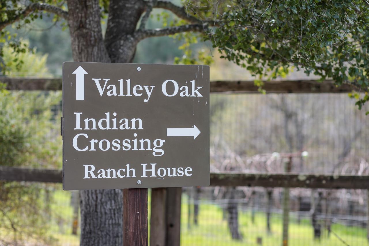 Portola Valley Ranch Blu Skye Media-8741-X2.jpg