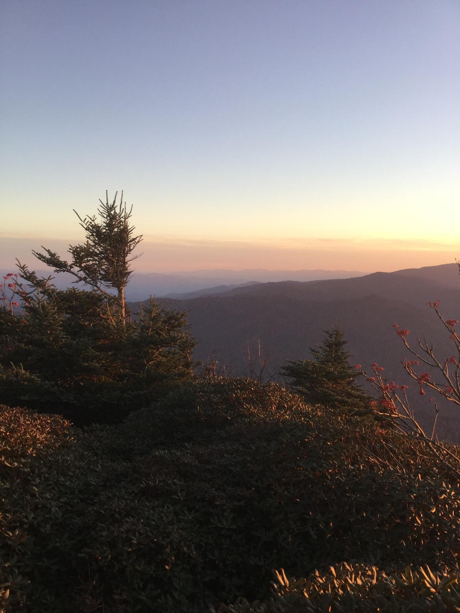 Mount LeConte Great Smoky Mountains 24.JPG