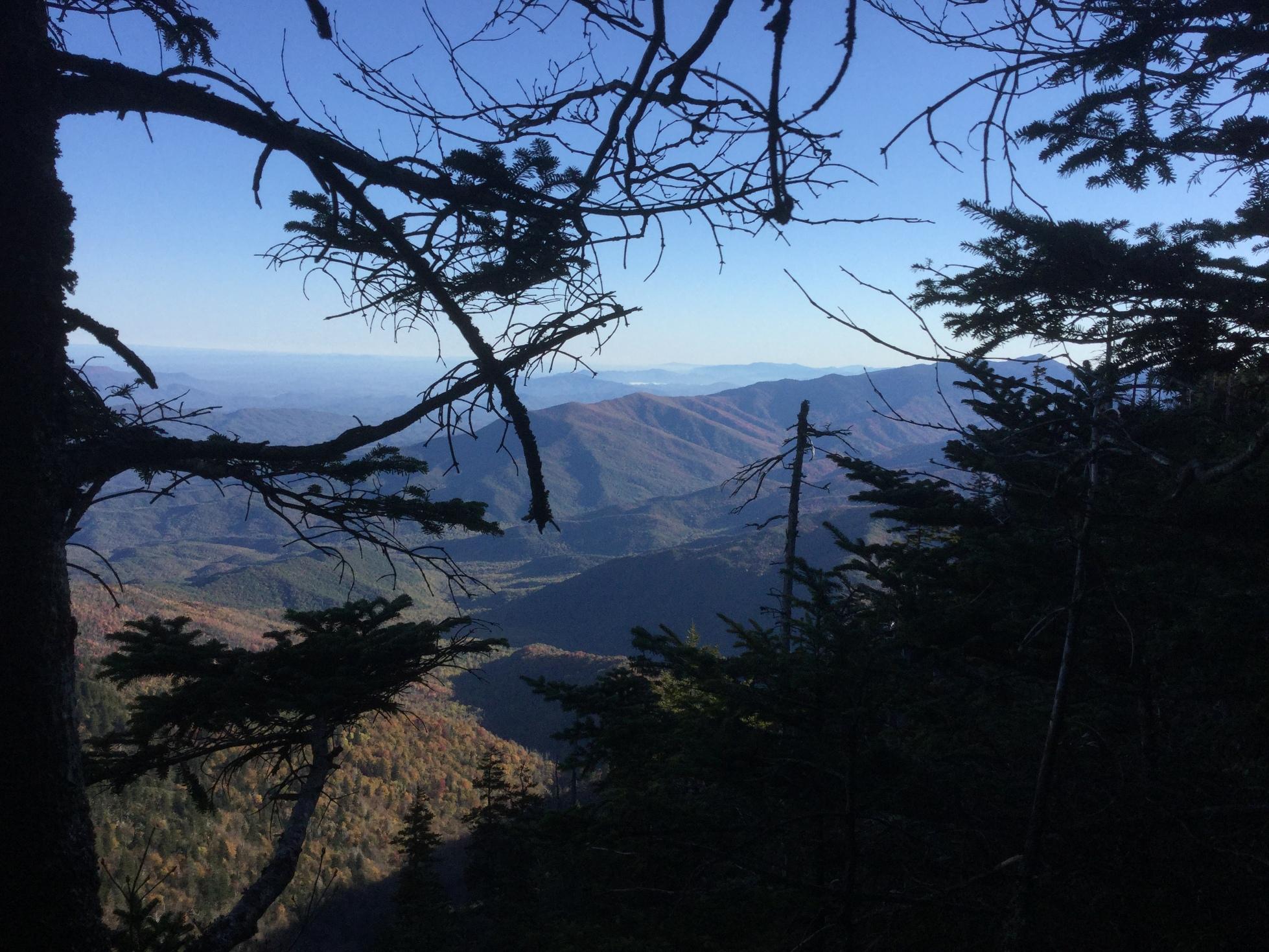 Mount LeConte Great Smoky Mountains 33.JPG