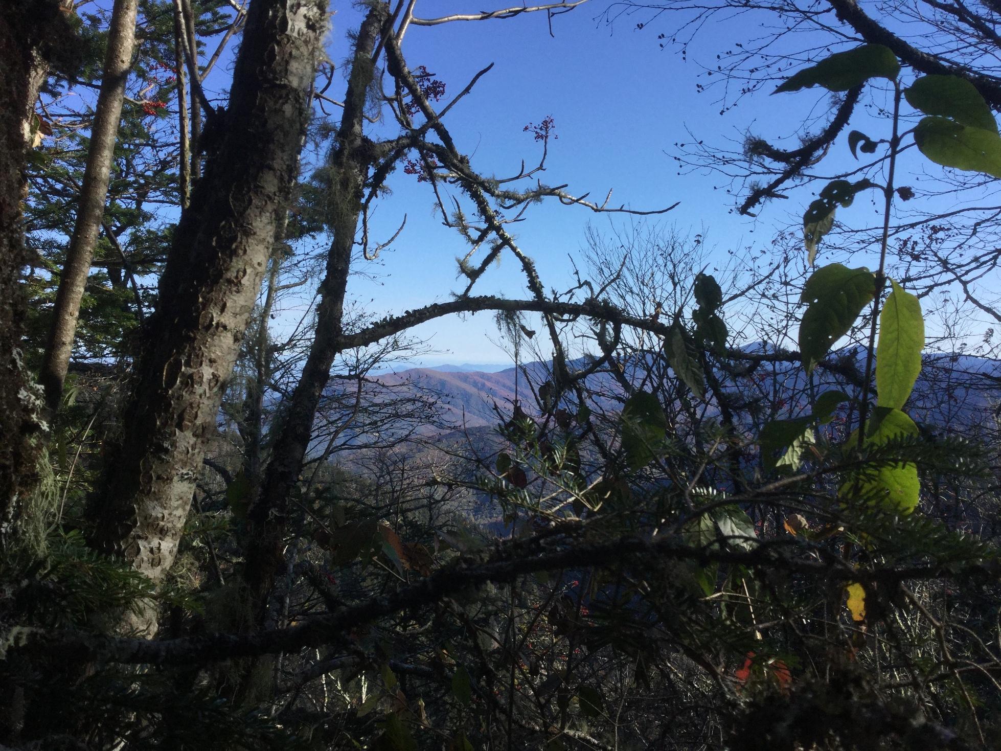 Mount LeConte Great Smoky Mountains 34.JPG