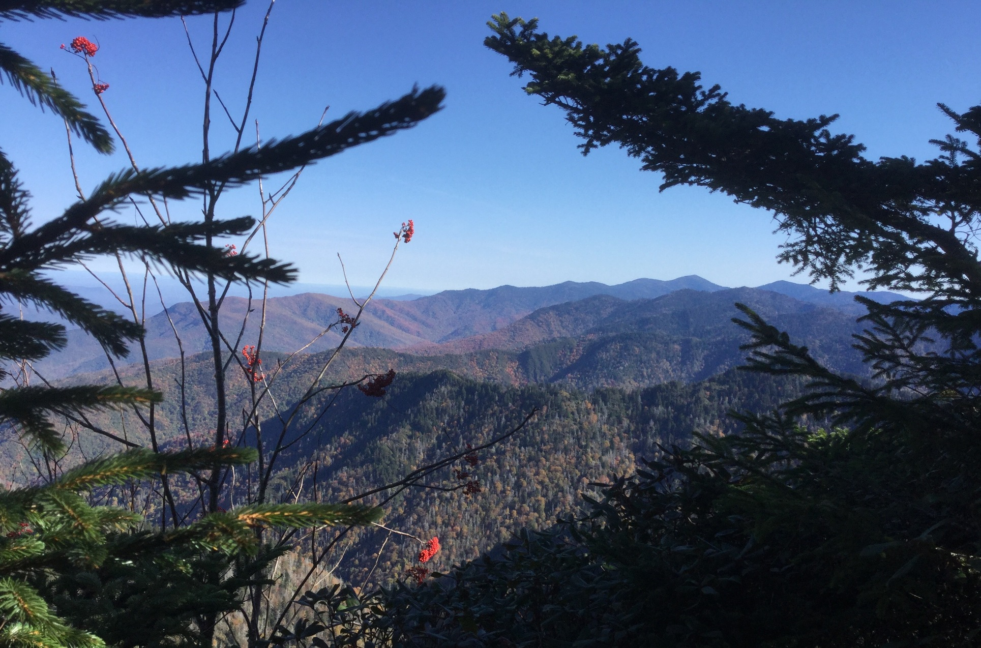 Mount LeConte Great Smoky Mountains 35.JPG