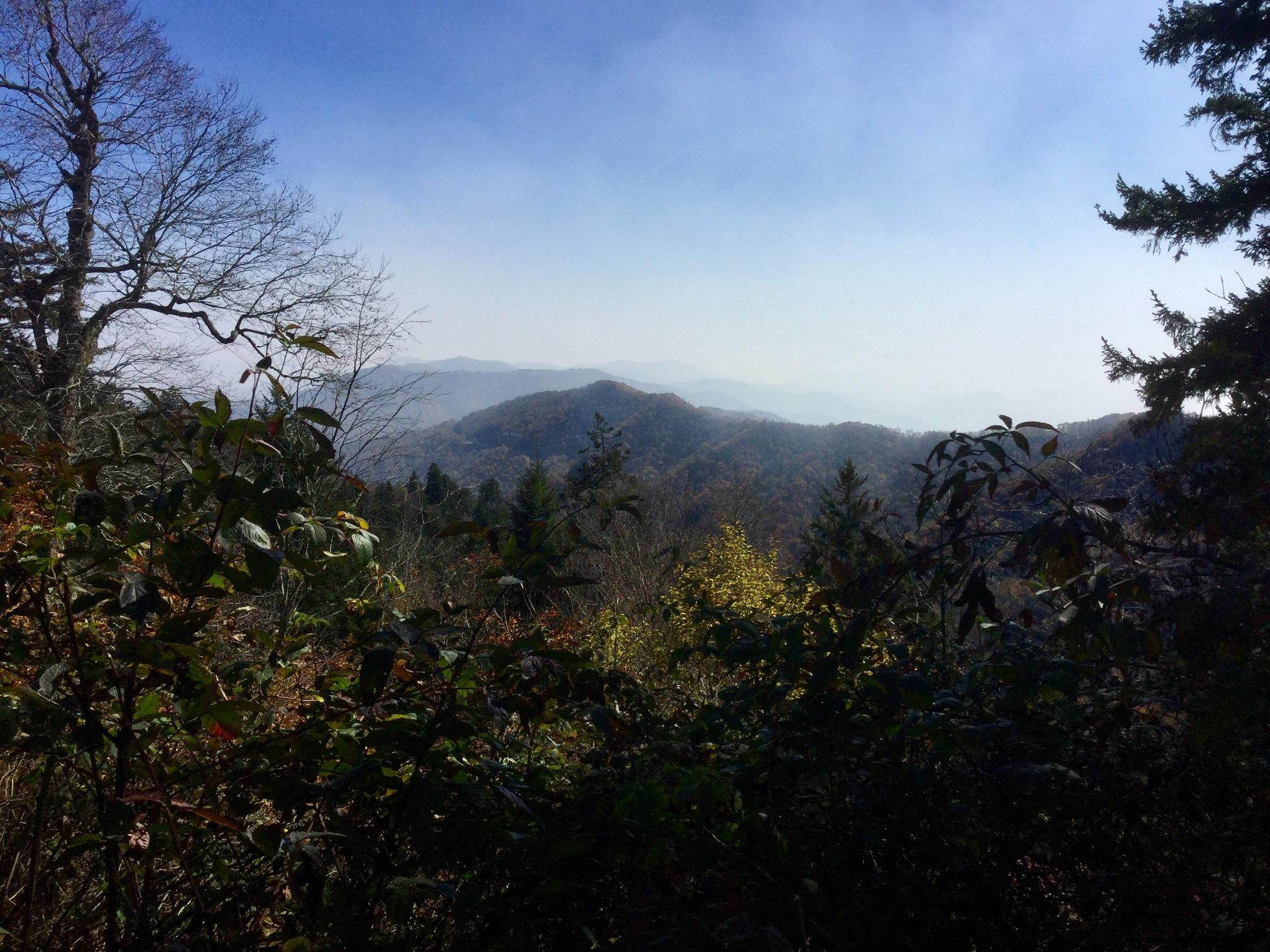 Mount LeConte Great Smoky Mountains 38.JPG