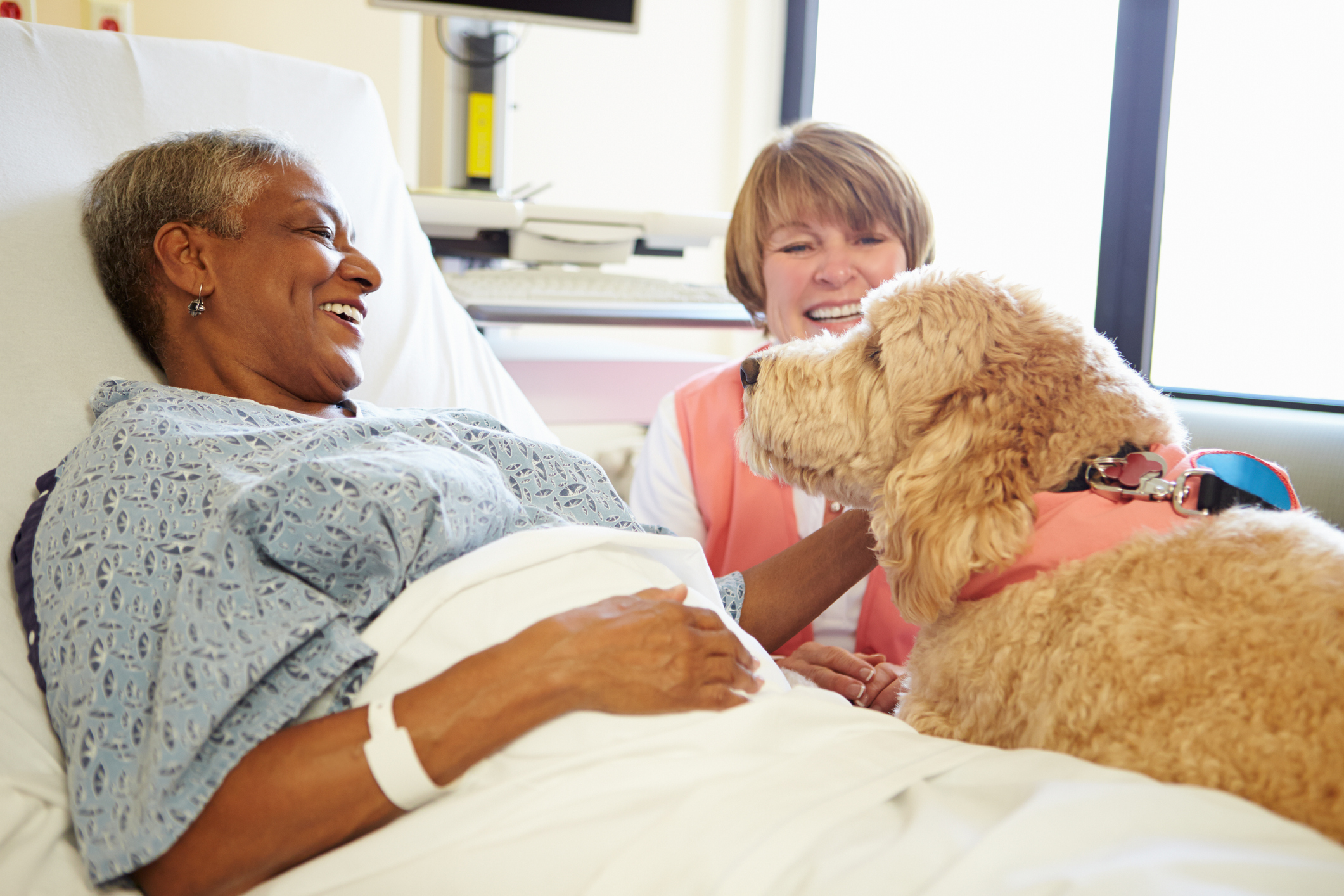Therapy Animals - We have occasional visits from furry friends to engage our residents and promote emotional health.