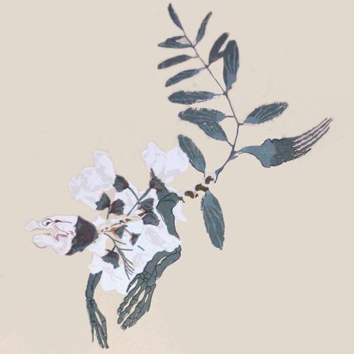flower-creature-11.jpg