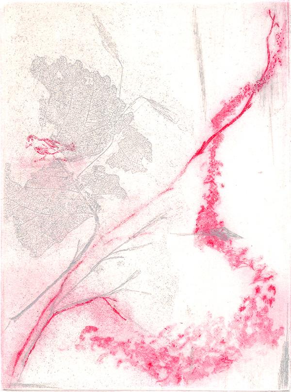red-bird Lisa Camhi.jpg