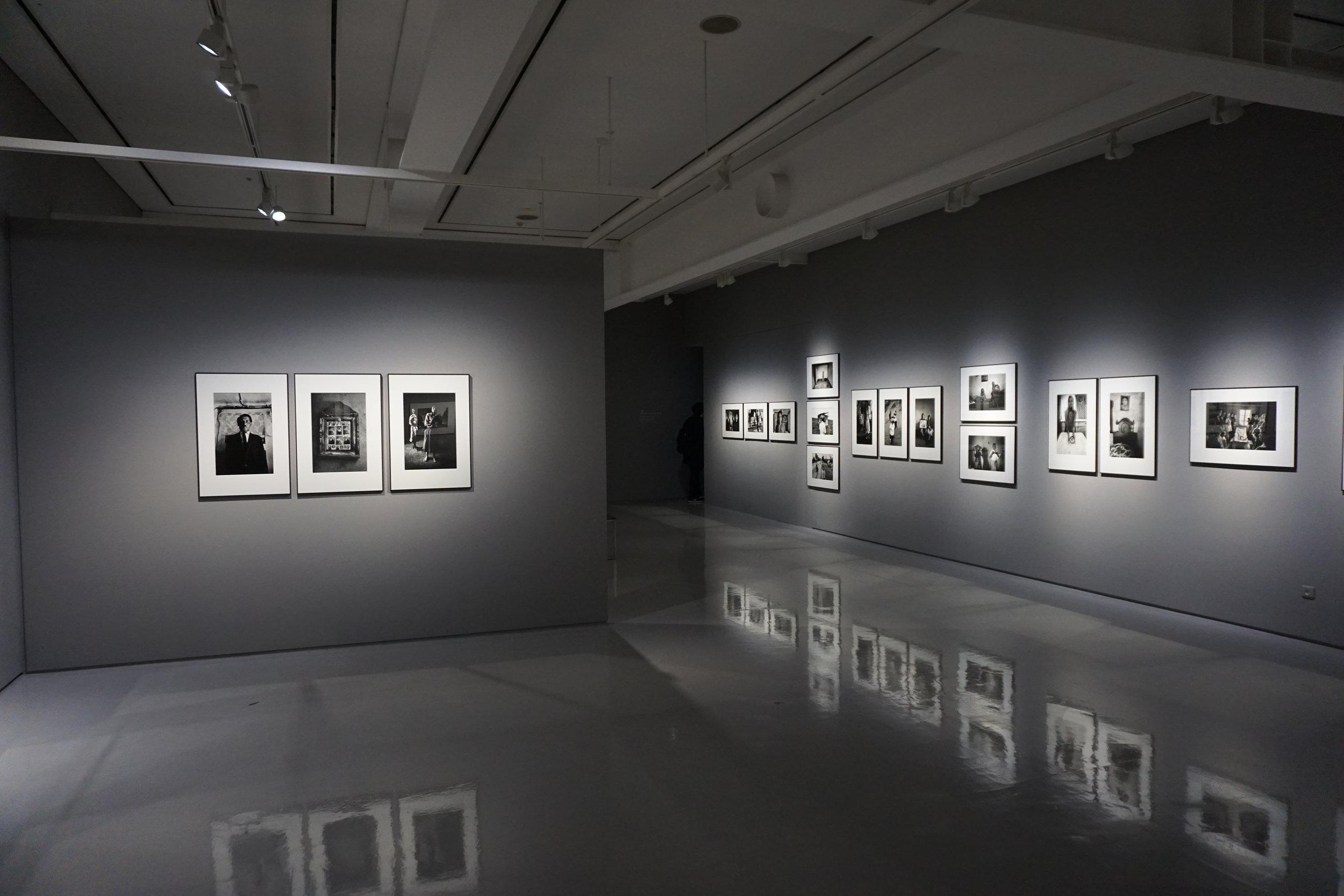 Members Gallery -