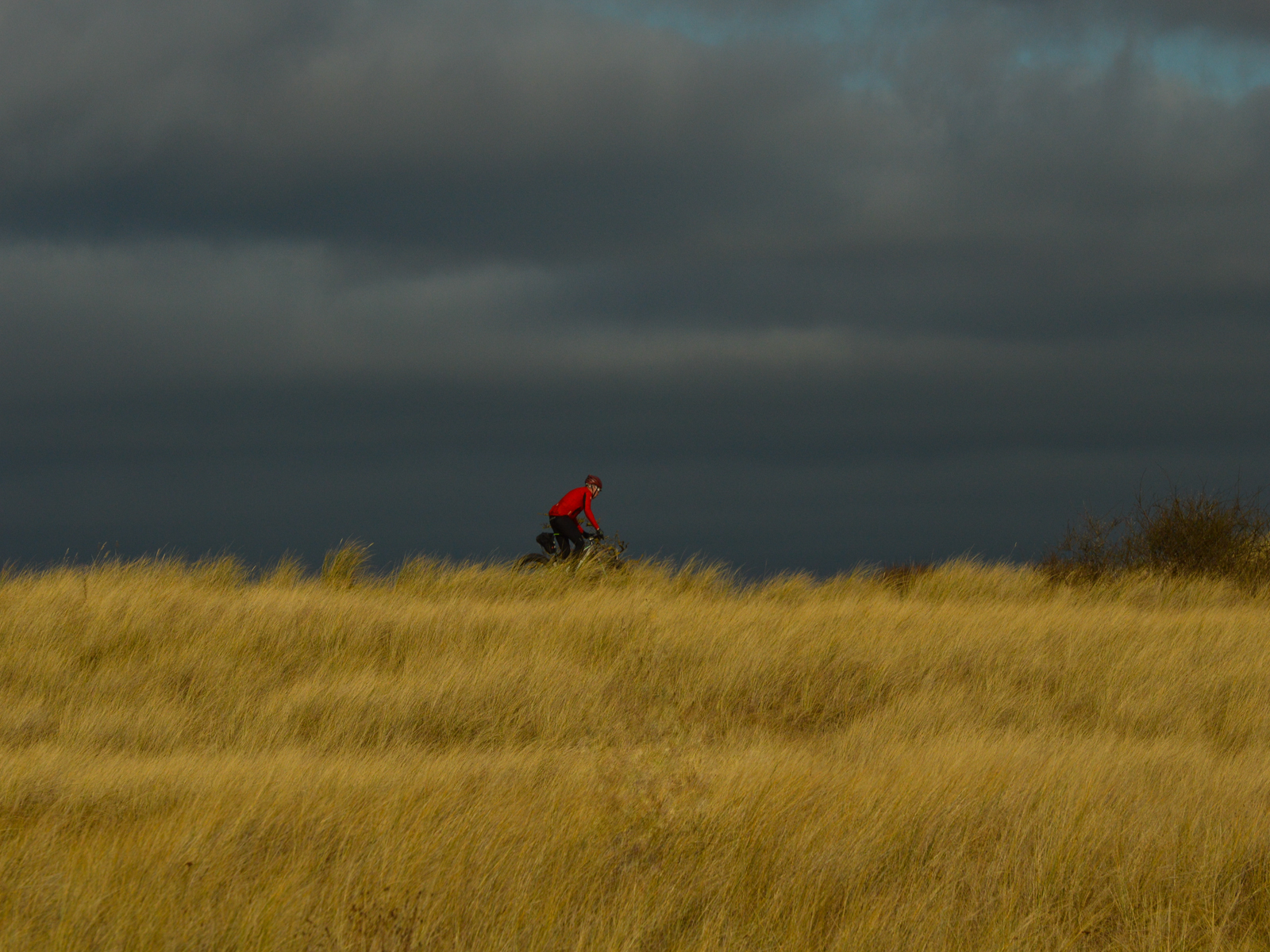 The Red Cyclist.jpg