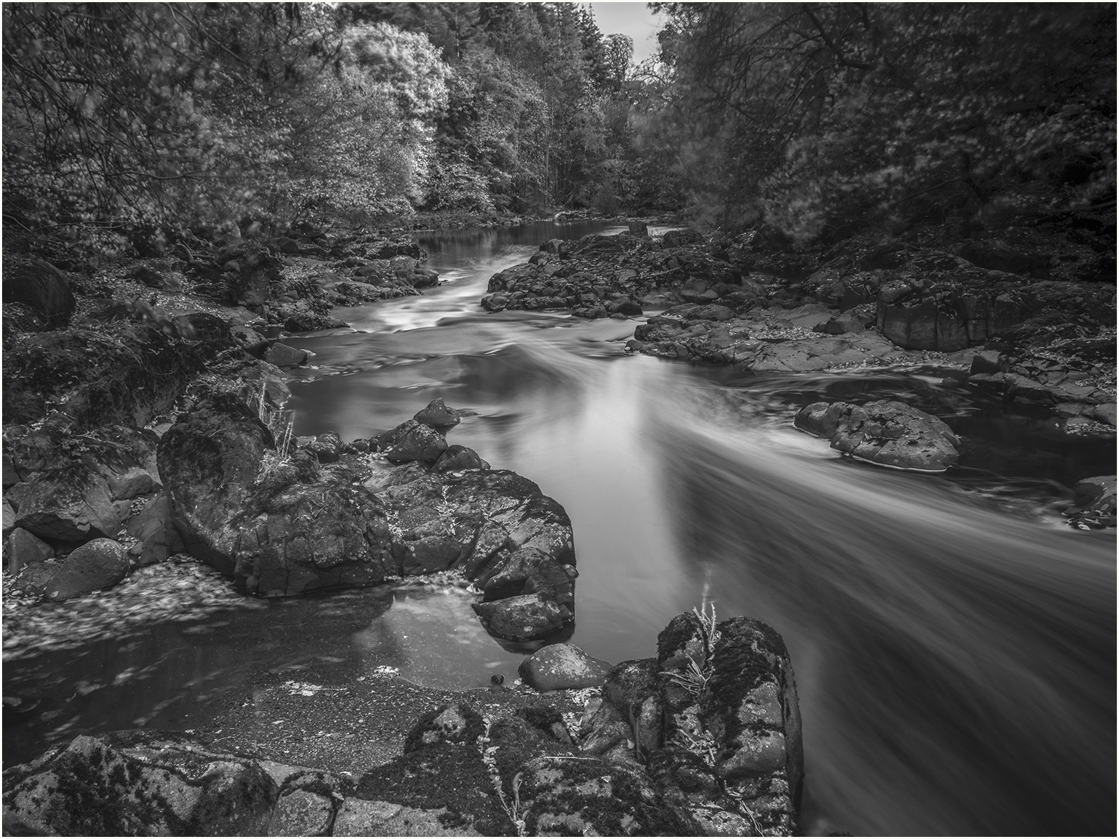 River Almond Print.jpg