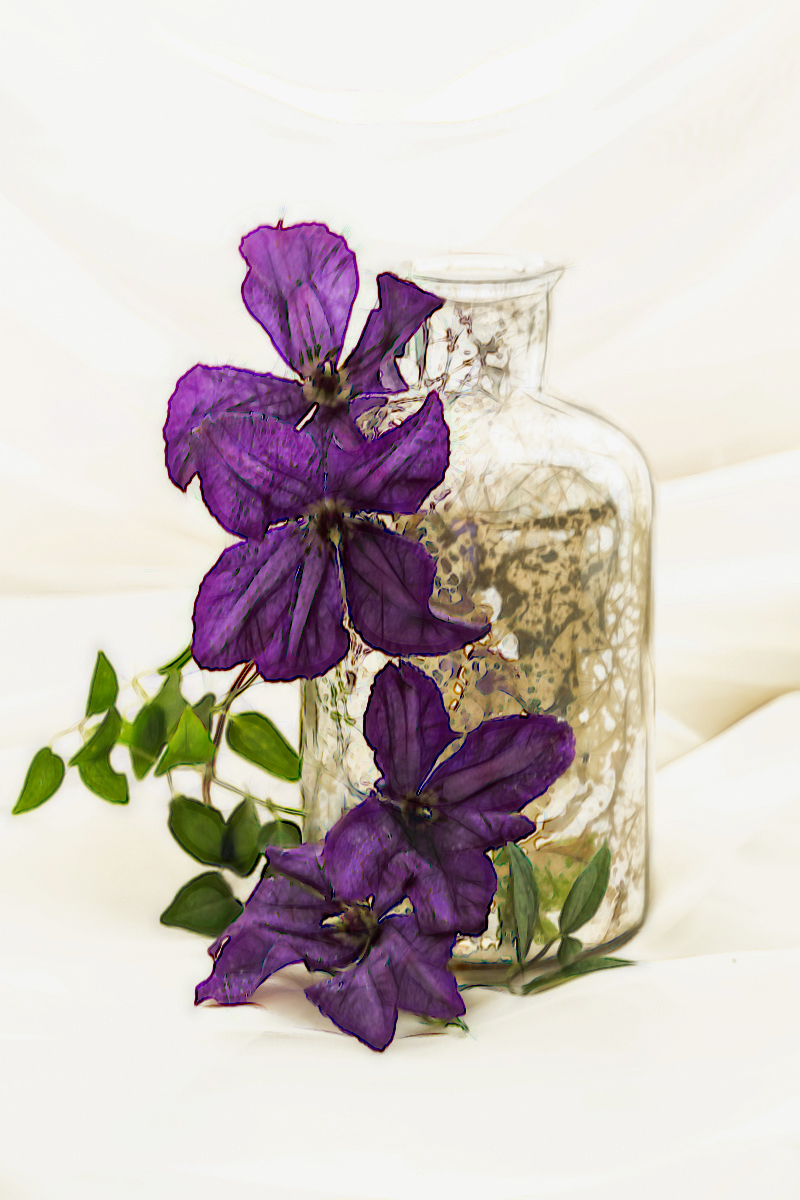 Clematis& Bottle_Member_51.jpg